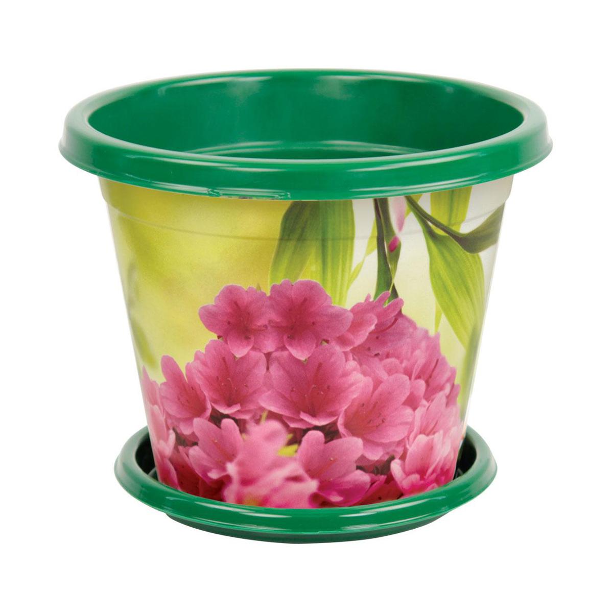 Горшок-кашпо Альтернатива Азалия, с поддоном, 3 л. М1725М1725Горшок-кашпо Альтернатива Азалия изготовлен из высококачественного пластика и подходит для выращивания растений и цветов в домашних условиях. Такие изделия часто становятся последним штрихом, который совершенно изменяет интерьер помещения или ландшафтный дизайн сада. Благодаря такому горшку-кашпо вы сможете украсить вашу комнату, офис, сад и другие места. Изделие оснащено специальным поддоном и декорировано ярким изображением цветов. Объем горшка: 3 л. Диаметр горшка (по верхнему краю): 21 см. Высота горшка: 17,5 см. Диаметр поддона: 16 см.