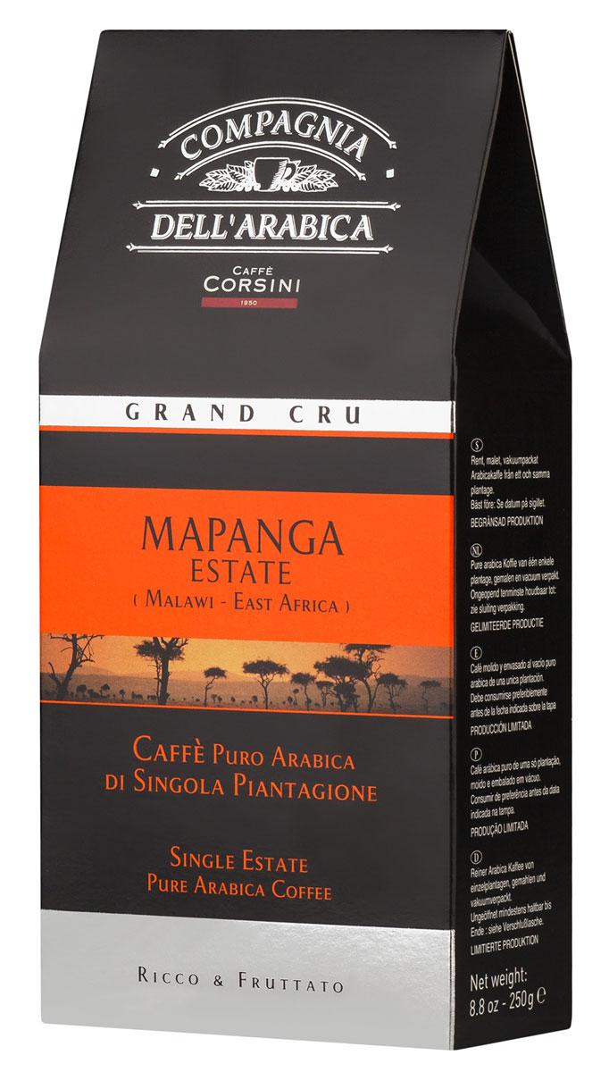 Compagnia Dell'Arabica Grand Cru Mapanga молотый кофе, 250 г (вакуумная упаковка) 8001684013326