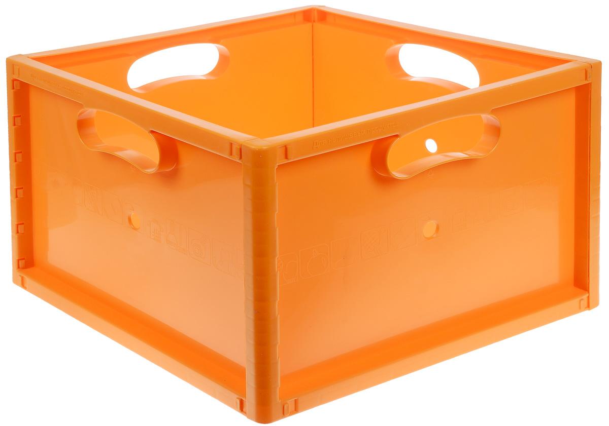 Berossi Ящик сборный цвет оранжевый 37 см х 37 см х 26 смА13818 вывСборный ящик Berossi, изготовленный из пластика, предназначен для хранения различных вещей в одном месте. Отлично подойдет для хранения игрушек, спортивных принадлежностей - ракеток, мячей, скакалок, одежды и много другого. Изделие оснащено по бокам ручками для удобной переноски.