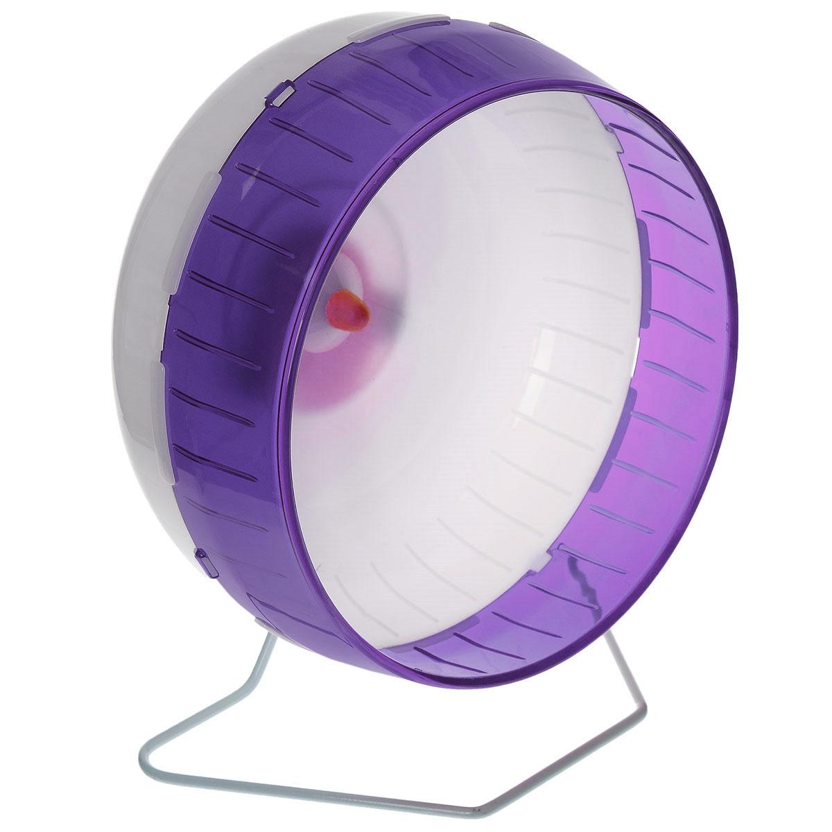 Колесо для грызунов I.P.T.S., цвет: белый, фиолетовый, 29 см285154_белый, фиолетовыйКолесо для грызунов I.P.T.S. - удобно и бесшумно, с высоким уровнем безопасности. Поместив его в клетку, вы обеспечите своему питомцу необходимую физическую активность. Сплошная внутренняя поверхность без щелей убережет питомца от возможных травм. Можно установить на подставку или прикрепить к решетке. Колесо можно использовать для сирийских хомяков, дегу, крыс или молодых шиншилл. Диаметр колеса: 29 см.