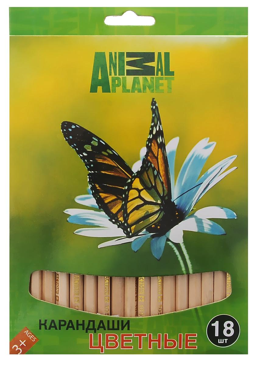 Action! Набор цветных карандашей Animal Planet. Бабочка, 18 цветовAP-ACP105-18_бабочкаЦветные карандаши Action Animal Planet. Бабочка откроют юным художникам новые горизонты для творчества, а также помогут отлично развить мелкую моторику рук, цветовое восприятие, фантазию и воображение. Традиционный шестигранный корпус изготовлен из натуральной древесины светлого цвета. Карандаши удобно держать в руках, а мягкий грифель не требует сильного нажима. Комплект включает 18 заточенных карандашей ярких насыщенных цветов.