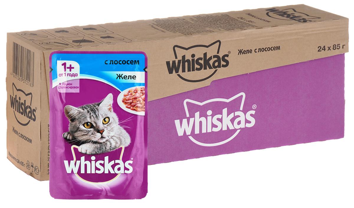 Консервы Whiskas для кошек от 1 года, желе с лососем, 85 г, 24 шт39893Консервы для кошек от 1 года Whiskas - полнорационный сбалансированный корм, который идеально подойдет вашему любимцу. Аппетитное желе приготовлено с учетом потребностей взрослых кошек. Специально сбалансированный рацион содержит все питательные вещества, витамины и минералы, необходимые кошке в этом возрасте. Консервы не содержат сои, консервантов, ароматизаторов, искусственных красителей и усилителей вкуса. В рацион домашнего любимца нужно обязательно включать консервированный корм, ведь его главные достоинства - высокая калорийность и питательная ценность. Консервы лучше усваиваются, чем сухие корма. Также важно, чтобы животные, имеющие в рационе консервированный корм, получали больше влаги. Состав: мясо и субпродукты, рыба (в том числе лосось минимум 4%), таурин, злаки, витамины, минеральные вещества. Пищевая ценность в 100 г: белки - 7,5 г, жиры - 3,5 г, клетчатка - 0,3 г, зола - 2,5 г, витамин А - не менее 150 МЕ, витамин Е - не менее...