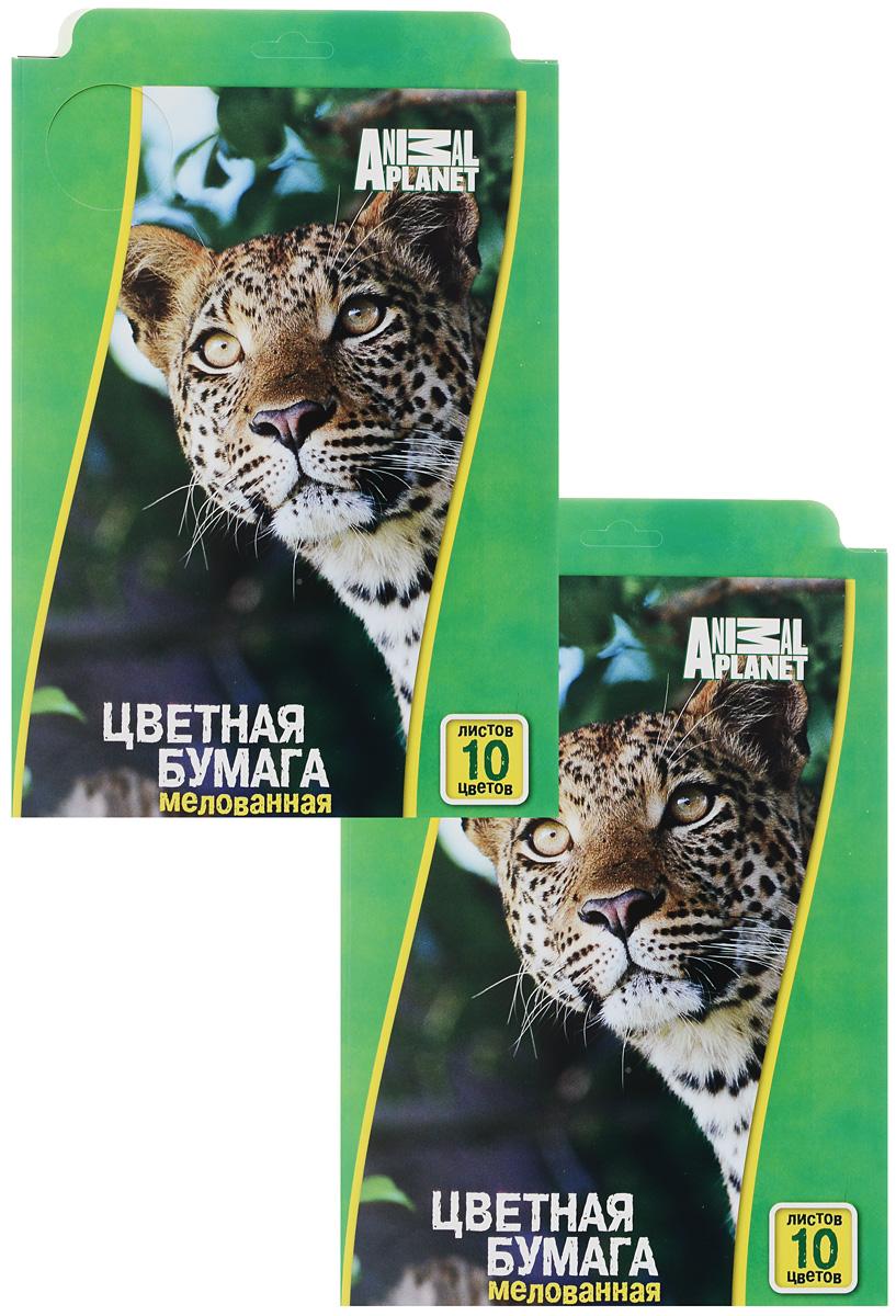 Набор цветной бумаги Action! Animal Planet, мелованная, 10 листов, 2 штAP-CCP-10/10Набор цветной бумаги Action! Animal Planet позволит вашему ребенку создавать всевозможные аппликации и поделки. Набор содержит 10 листов цветной бумаги формата А4. Листы упакованы в оригинальную картонную папку, оформленную в тематике Animal Planet. Создание поделок из картона и бумаги поможет ребенку в развитии творческих способностей, кроме того, это увлекательный досуг. В комплекте 2 набора по 10 листов. Рекомендуемый возраст от 6 лет.