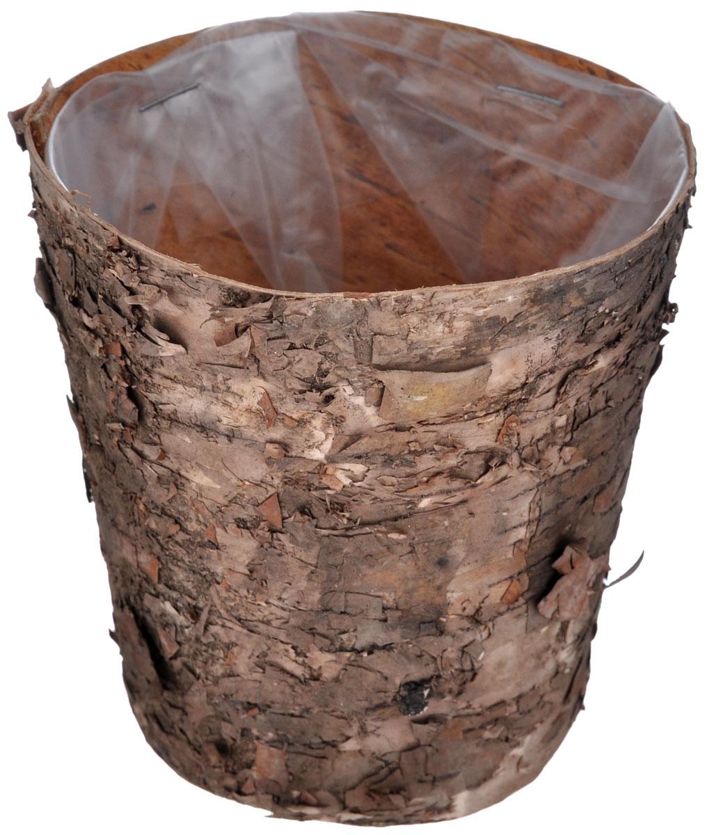 Декоративный элемент Dongjiang Art, цвет: натуральное дерево, диаметр 10 см7709035_ нат/деревоДекоративный элемент Dongjiang Art используется как основа для последующего декорирования. Изделие изготовлено из бересты в виде кашпо. Вы можете украсить его лентами, фигурками, красивыми бусинами, цветной бумагой и другим материалом. Вы получите наслаждение от творчества и удивительно красивое украшение для вашего интерьера или замечательный подарок для близких людей! Диаметр кашпо: 10 см.