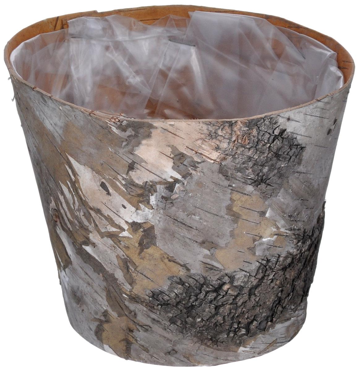 Декоративный элемент Dongjiang Art, цвет: натуральное дерево, 15 х 15 х 12 см7709033_нат/деревоДекоративный элемент Dongjiang Art, изготовленный из натуральной коры дерева, предназначен для украшения цветочных композиций. Флористика - вид декоративно-прикладного искусства, который использует живые, засушенные или консервированные природные материалы для создания флористических работ. Это целый мир, в котором есть место и строгому математическому расчету, и вдохновению. Диаметр изделия по верхнему краю: 15 см. Диаметр дна: 11 см. Высота изделия: 12 см.