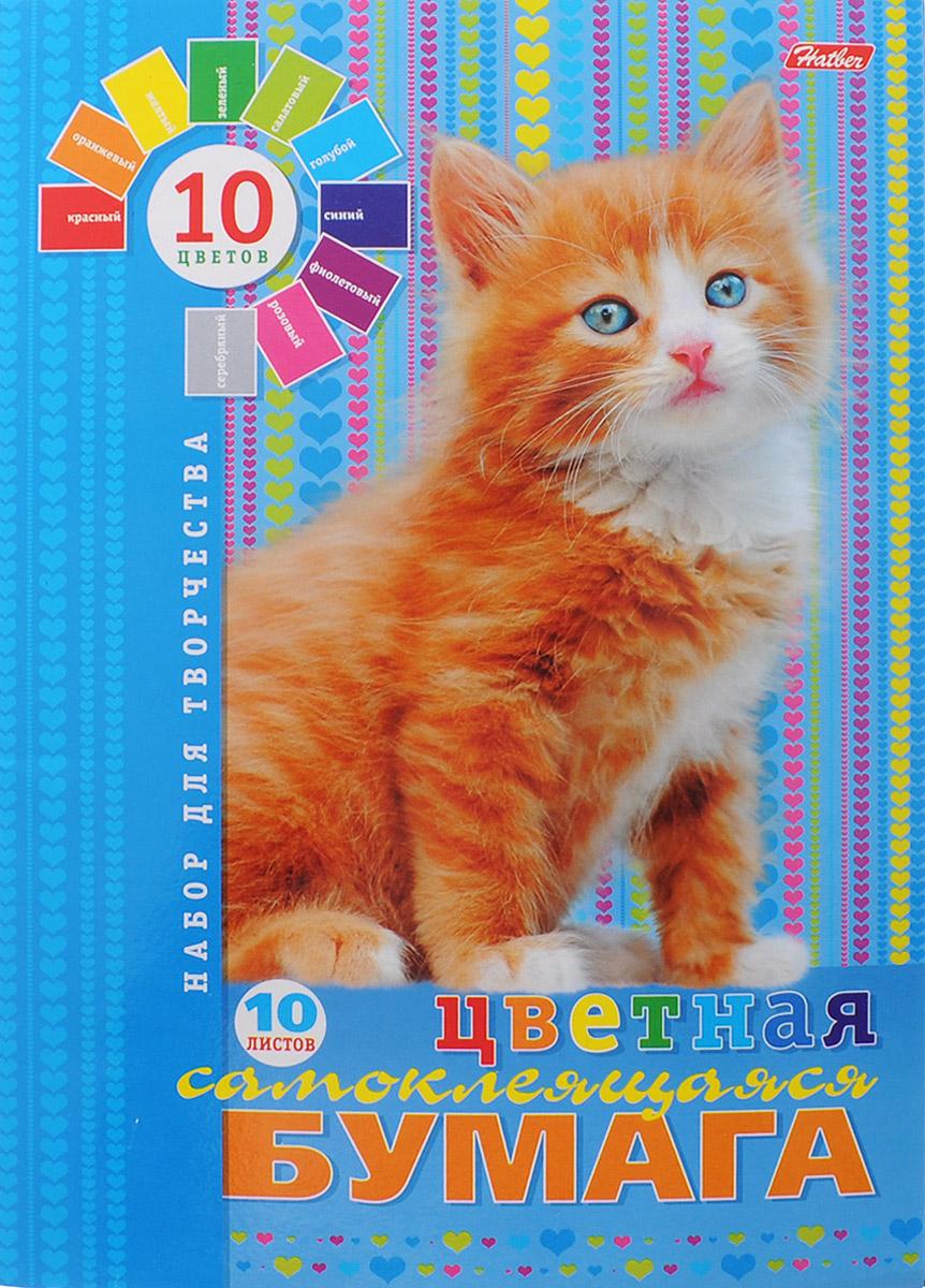 Hatber Набор цветной самоклеящейся бумаги Пушистый котенок 10 листов10Бц4с_09149Набор цветной самоклеящейся бумаги Hatber Пушистый котенок позволит создавать всевозможные аппликации и поделки. Набор состоит из десяти листов цветной самоклеящейся бумаги формата А4 десяти цветов: красного, зеленого, серого, синего, коричневого, оранжевого, голубого, золотистого, желтого и черного цветов. Создание поделок из цветной бумаги позволяет ребенку развивать творческие способности, кроме того, это увлекательный досуг. Набор упакован в картонную папку с изображением котенка.