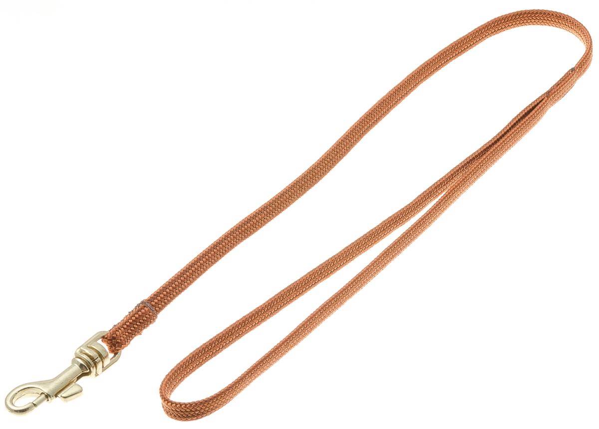 Водилка для собак V.I.Pet, цвет: светло-коричневый, ширина 5 мм, длина 50 см72-0749Профессиональная выставочная водилка V.I.Pet изготовлена из нейлона. Легкая, прочная, удобная. Применяется также для повседневного использования. При помощи карабина идеально комбинируется с выставочными цепочками, ошейниками, полуудавками.