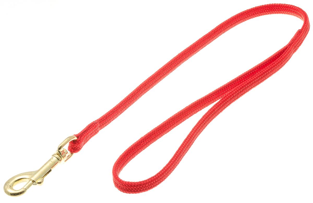Водилка для собак V.I.Pet, цвет: красный, ширина 7 мм, длина 50 см72-0768Профессиональная выставочная водилка V.I.Pet изготовлена из нейлона. Легкая, прочная, удобная. Применяется также для повседневного использования. При помощи карабина идеально комбинируется с выставочными цепочками, ошейниками, полуудавками.