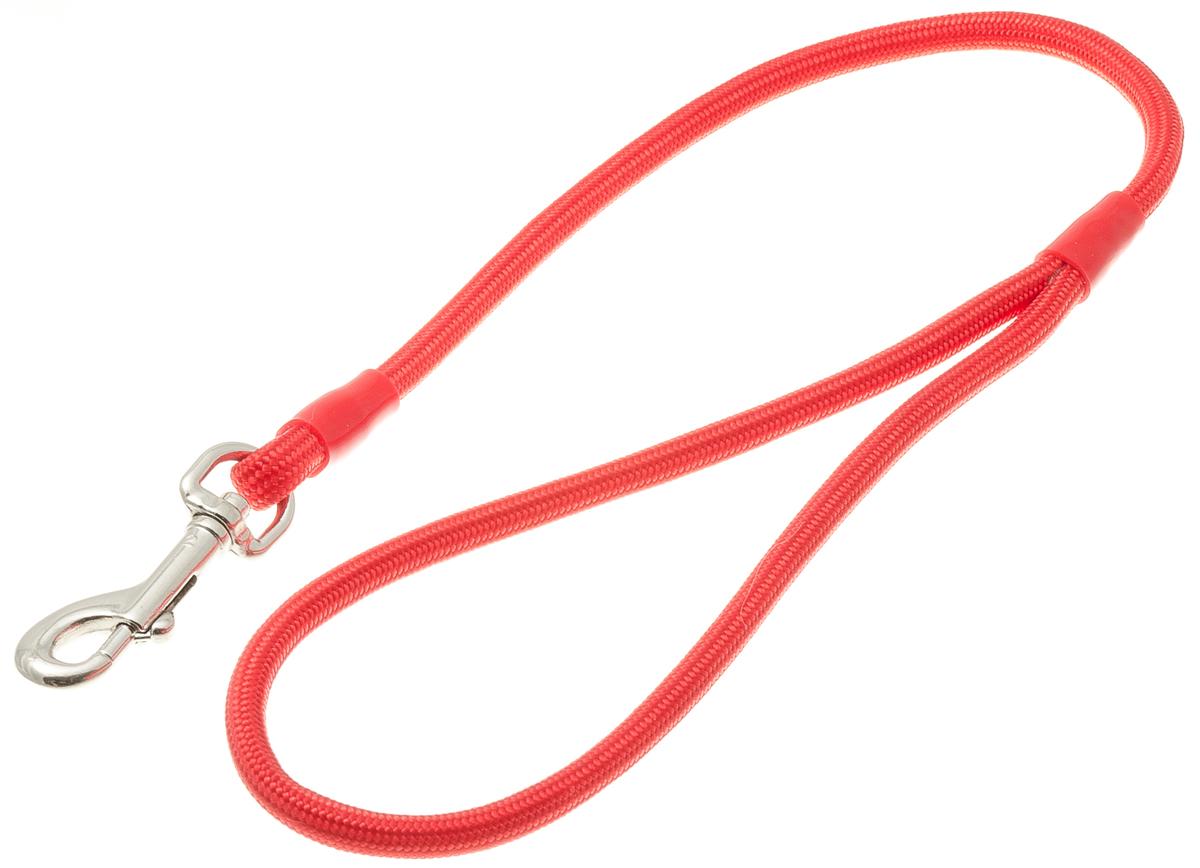 Водилка для собак V.I.Pet, цвет: красный, диаметр 6 мм, длина 50 см72-0790Профессиональная водилка V.I.Pet изготовлена из нейлона. Легкая, прочная, удобная. Применяется также для повседневного использования. При помощи карабина идеально комбинируется с выставочными цепочками, ошейниками, полуудавками. Шнур с плетеным кордом обладает высокой прочностью и прекрасно держит форму.