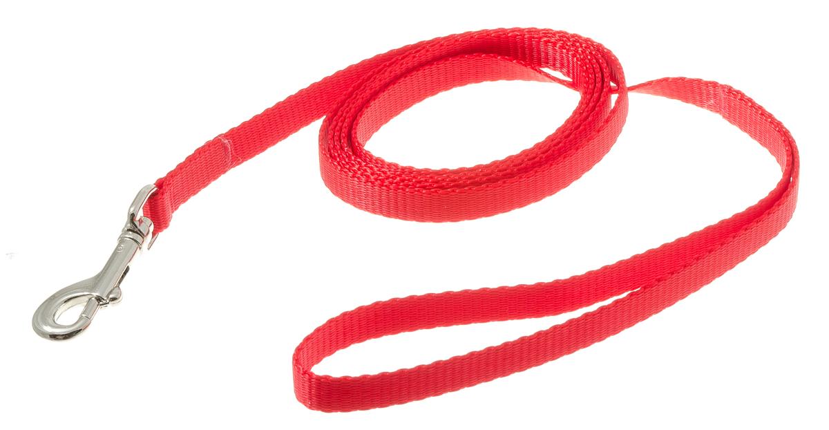 Поводок с карабином лента 10 мм*2 м (красный) 73-093473-0934