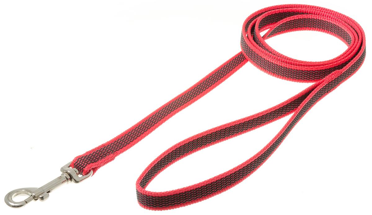 Поводок для собак V.I.Pet, профессиональный, цвет: серый, красный, ширина 15 мм, длина 1,5 м73-2574Профессиональный нейлоновый поводок V.I.Pet с латексной нитью предназначен для дрессировки собак, а также для повседневного использования. Подойдет для сильных и активных собак. Не скользит, не обжигает руки. Вращающийся вертлюг карабина предотвращает перекручивание поводка. Ширина поводка: 15 мм.