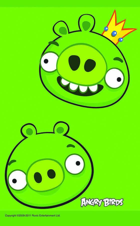 Amscan Скатерть Angry Birds 140 см х 260 см1502-1116Скатерть Angry Birds органично впишется в интерьер кухни, или детской, а яркий рисунок обязательно понравится вашему ребенку. Скатерть поможет создать атмосферу уюта и домашнего тепла в интерьере вашей кухни, а также станет настоящим украшением праздничного стола.