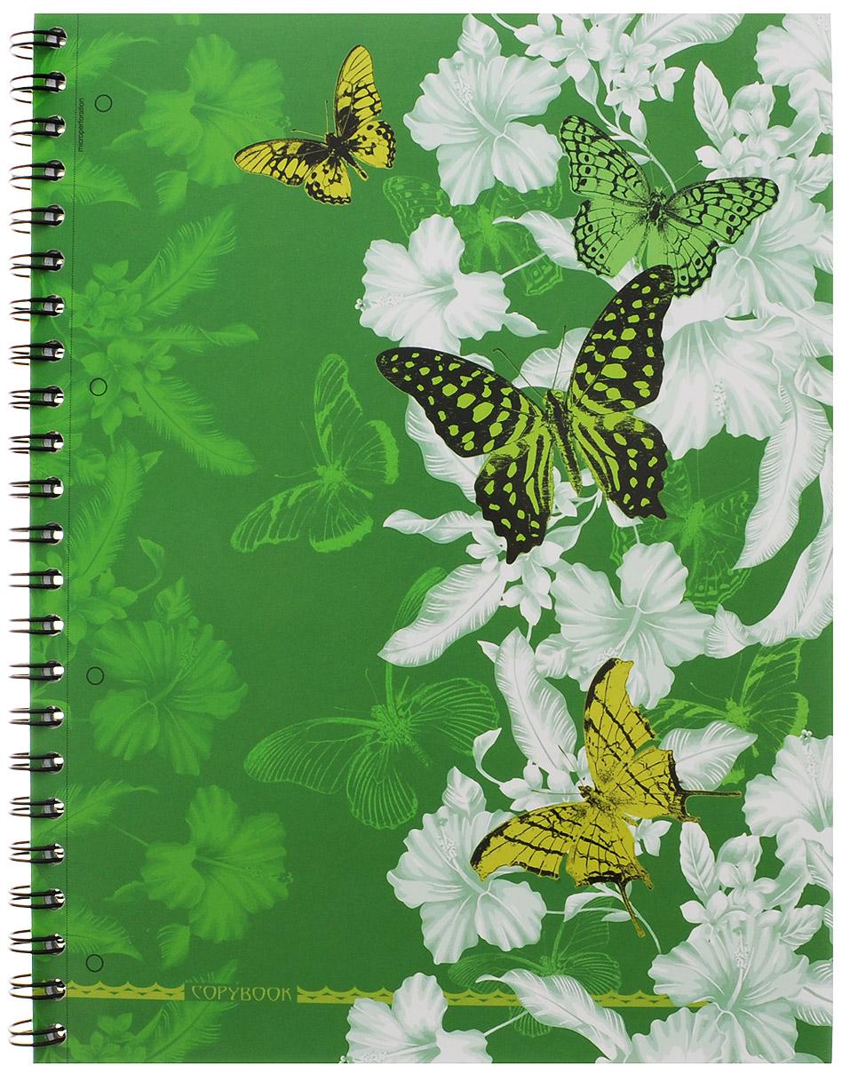 Полиграфика Тетрадь в клетку Butterfly Waltz 120 листов формат А4 цвет зеленый120243654-37655_зеленыйТетрадь в клетку Полиграфика Butterfly Waltz представлена в формате А4 в твердом переплете с изображением бабочек. Листы разлинованы в голубую клетку с полями. Каждый лист имеет микроперфорацию по отрывному краю и четыре отверстия для колец. Вне зависимости от профессии и рода деятельности у человека часто возникает потребность сделать какие-либо заметки. Именно поэтому всегда удобно иметь эту тетрадь под рукой, особенно если вы творческая личность и постоянно генерируете новые идеи. Тетрадь содержит удобный календарь на 2015-2018 годы.
