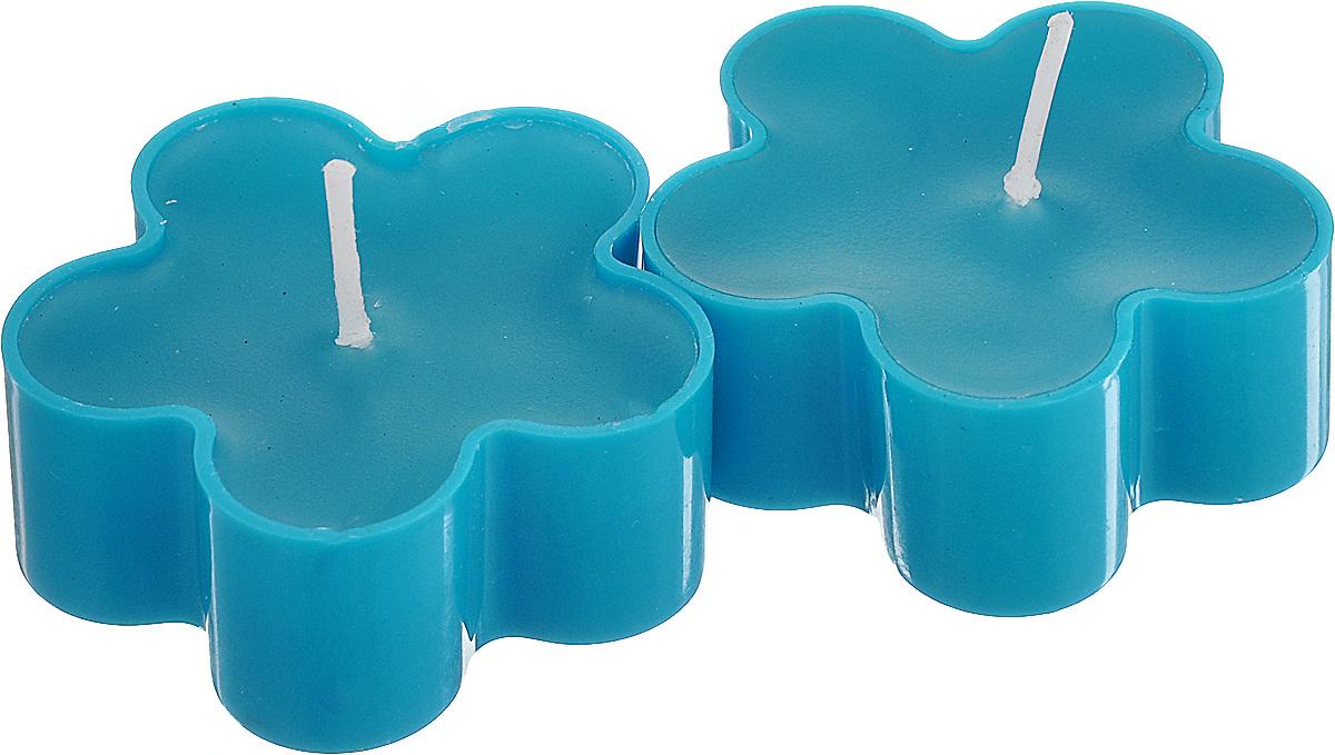 Набор декоративных свечей Lunten Ranta Цветик, цвет: голубой, 4,5 см х 4,5 см, 2 шт67757_2Набор Lunten Ranta Цветик состоит из 2 декоративных свечей, изготовленных из парафина в пластиковых основах. Свечи в виде цветов украсят интерьер вашего дома или офиса и наполнят его атмосферу теплом и уютом. Размер свечи (по верхнему краю): 4,5 см х 4,5 см.