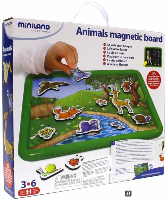 Miniland Обучающий набор Животные в лесу с магнитно-маркерной д