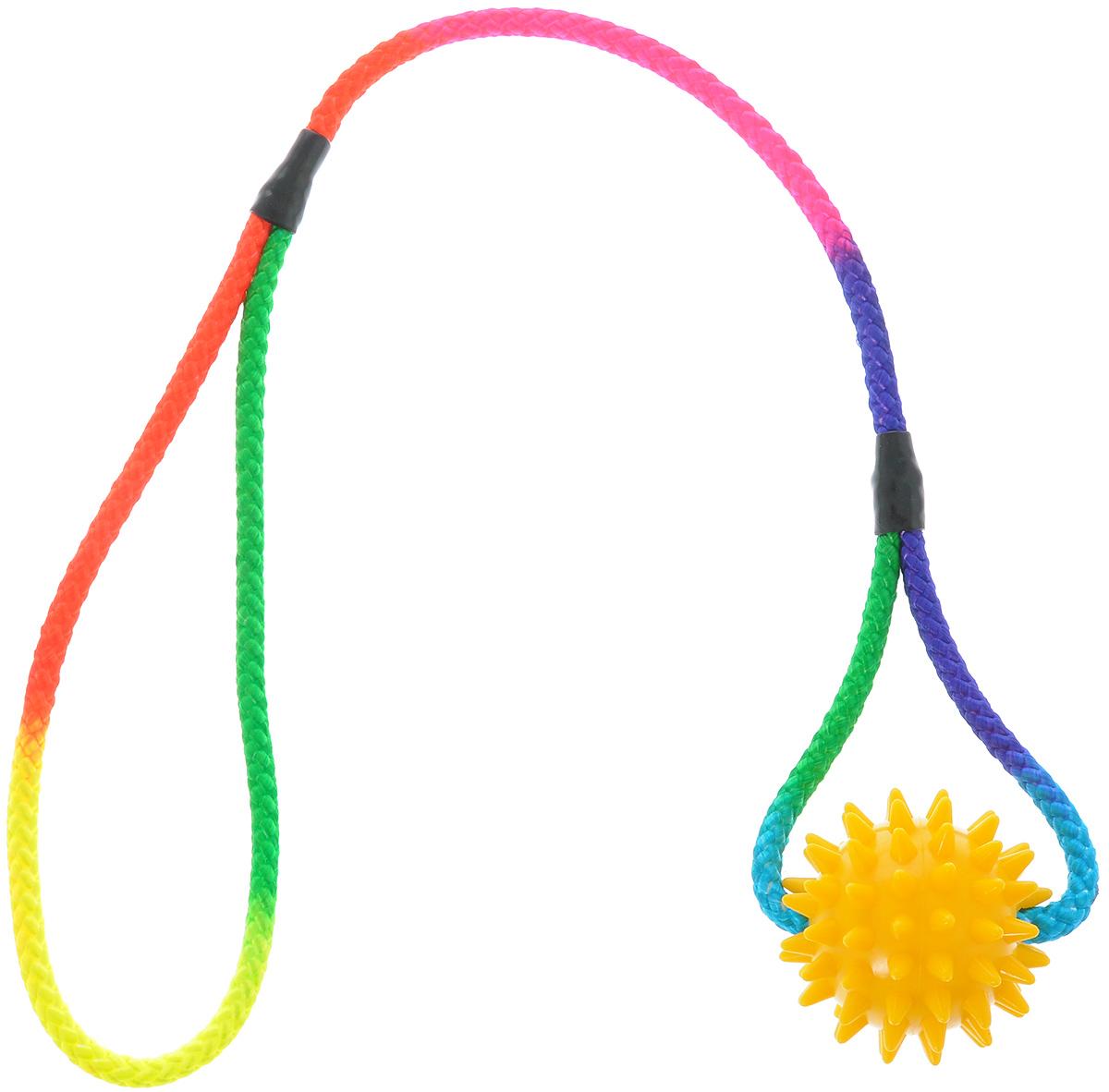 Игрушка для собак V.I.Pet Массажный мяч, на шнуре, цвет: желтый, диаметр 5,5 см770550_желтыйИгрушка для собак V.I.Pet Массажный мяч, изготовленная из ПВХ, предназначена для массажа и самомассажа рефлексогенных зон. Она имеет мягкие закругленные массажные шипы, эффективно массирующие и не травмирующие кожу. Сквозь мяч продет шнур. Игрушка не позволит скучать вашему питомцу ни дома, ни на улице. Диаметр: 5,5 см. Длина шнура: 50 см.