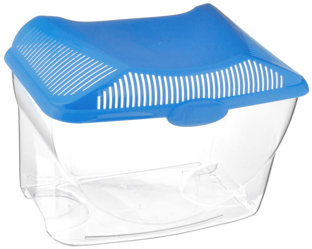 Аквариум-террариум Savic Aqua Smile, цвет: прозрачный, голубой, 6 л0117-0000_прозрачный, голубойАквариум-террариум Savic Aqua Smile, выполненный из высококачественного пластика, идеально подойдет для разведения небольших рыб, водоплавающих черепах, пауков. Изделие оснащено откидной крышкой с отверстиями для прохождения воздуха. Такой аквариум-террариум подходит к дизайну практически любого интерьера. Более того, его можно устанавливать практически в любой части комнаты или офиса. Размер (без учета крышки): 30 см х 18 см х 17 см. Высота (с учетом крышки): 21 см. Объем: 6 л.