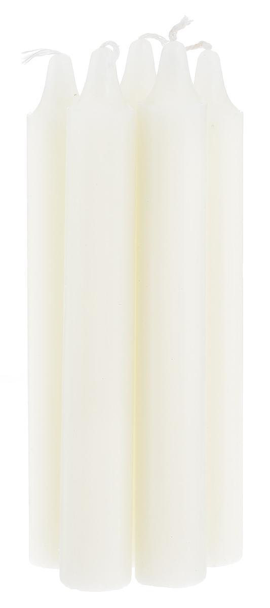 Набор свечей Fancy Fair, с ароматом ванили, высота 15 см, 5 штW15Набор Fancy Fair, выполненный из парафина, состоит из пяти свечей. Изделия порадуют вас своим дизайном и приятным ароматом ванили. Такой набор может стать отличным подарком или дополнить интерьер вашей комнаты.