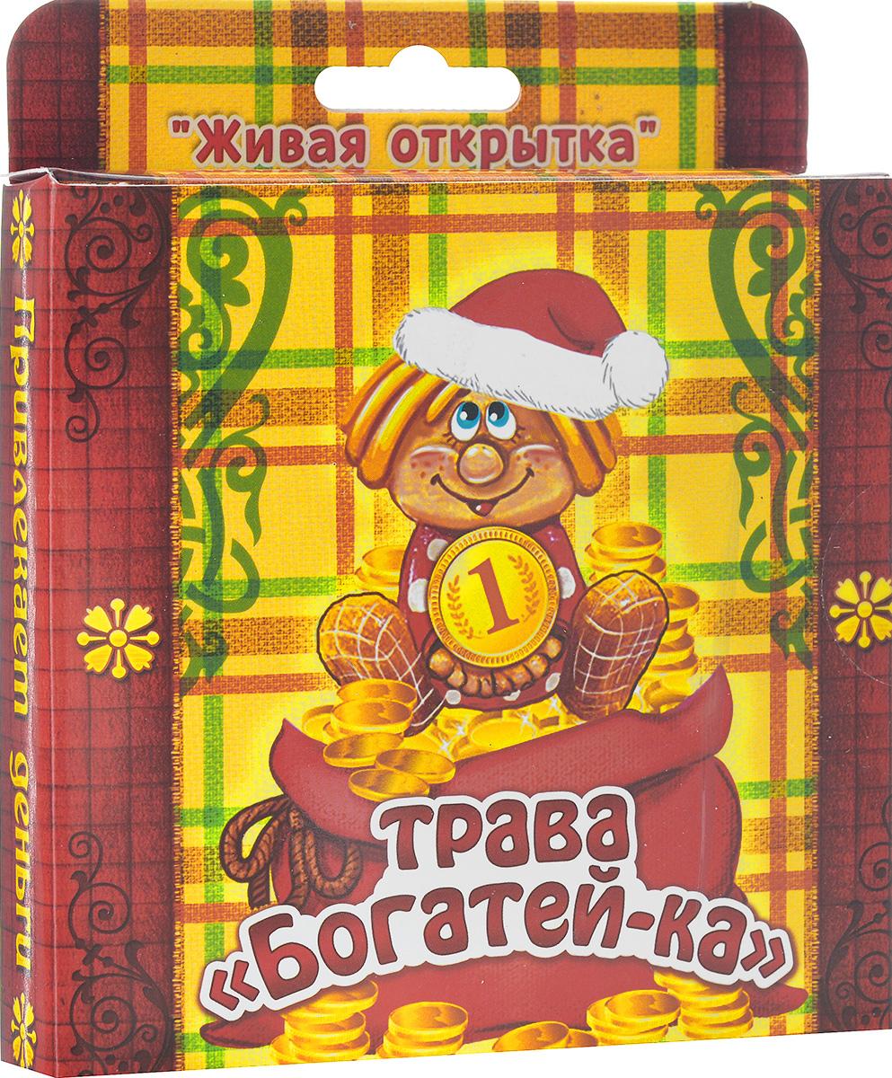 Открытка-прорастайка Sima-land Трава-богатейка1032186В новогодней суете не забудьте, что подарки должны быть особенными и душевными. Растущая трава в открытке Sima-land Трава-богатейка - это необычный и яркий сувенир, наделенный настоящим духом Нового года. Зелень можно выращивать где угодно, вам не обязательно держать ее на подоконнике или создавать тепличные условия, достаточно теплой обстановки и электрического источника освещения. Посадите семена, поливайте их, и через 3-4 дня из грунта начнут пробиваться маленькие росточки свежей травы. В набор входит: - декоративные фигурки: 3 шт.; - емкость для посадки (10 см х 10 см х 2 см); - грунт для выращивания; - семена; - инструкция по посадке и уходу на русском языке. Средний размер декоративных фигурок: 4 см х 6 см.