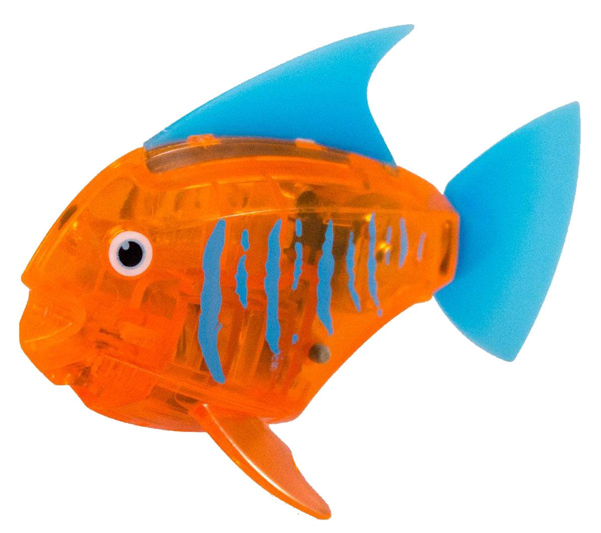 Hexbug Микро-робот Deco цвет оранжевый460-3591Hexbug Aquabot 2.0 Deco - робот микро-рыбка Angelfish с дополнительным окрасом, который оживляет ее внешний вид, делая ее похожей на настоящую экзотическую рыбку. Для микрорыбки не требуется особый уход. Все что нужно — это емкость и вода. Попадая в жидкость, рыбка, почувствовав комфортную для себя среду, начнет шевелить плавничками и хвостом, плавая на поверхности и исследуя окружающее водное пространство, или быстро погружаясь вглубь. Спустя 5 минут непрерывных движений рыбка заснет. Постучав по стенкам аквариума, ее можно разбудить и продолжить игру. В один аквариум можно поместить несколько рыбок, вместе им будет веселее. Кстати за микрорыбкой можно наблюдать не только днем, но и ночью, ведь она светится в темноте!