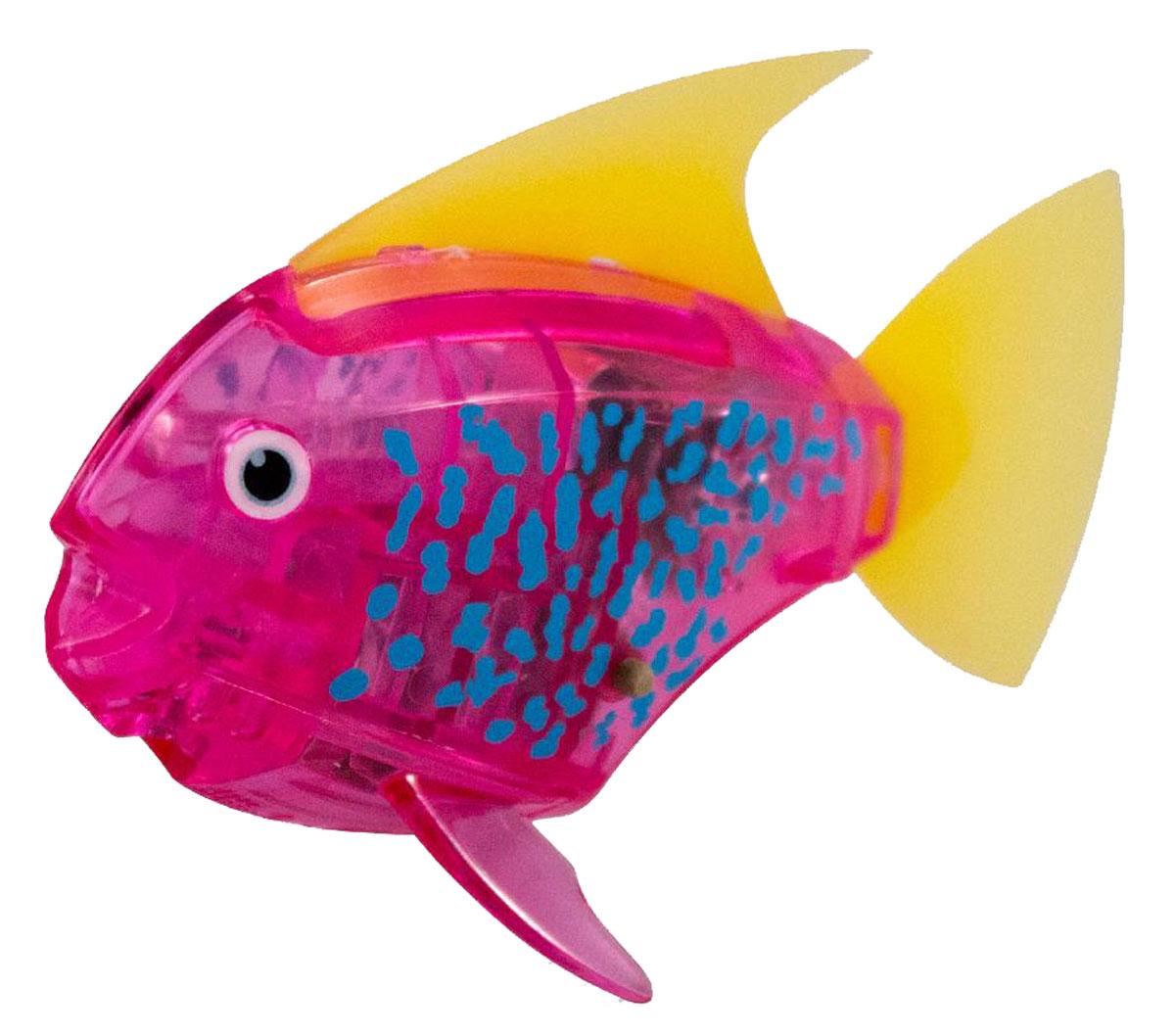Hexbug Микро-робот Deco цвет розовый460-3591_3Hexbug Aquabot 2.0 Deco - робот микро-рыбка Angelfish с дополнительным окрасом, который оживляет ее внешний вид, делая ее похожей на настоящую экзотическую рыбку. Для микрорыбки не требуется особый уход. Все что нужно — это емкость и вода. Попадая в жидкость, рыбка, почувствовав комфортную для себя среду, начнет шевелить плавничками и хвостом, плавая на поверхности и исследуя окружающее водное пространство, или быстро погружаясь вглубь. Спустя 5 минут непрерывных движений рыбка заснет. Постучав по стенкам аквариума, ее можно разбудить и продолжить игру. В один аквариум можно поместить несколько рыбок, вместе им будет веселее. Кстати за микрорыбкой можно наблюдать не только днем, но и ночью, ведь она светится в темноте!