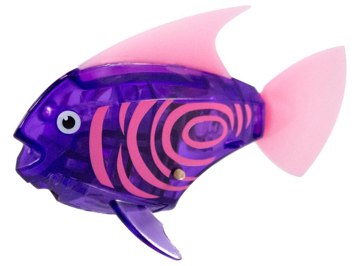 Hexbug Микро-робот Deco цвет фиолетовый460-3591_4Hexbug Aquabot 2.0 Deco - робот микро-рыбка Angelfish с дополнительным окрасом, который оживляет ее внешний вид, делая ее похожей на настоящую экзотическую рыбку. Для микрорыбки не требуется особый уход. Все что нужно — это емкость и вода. Попадая в жидкость, рыбка, почувствовав комфортную для себя среду, начнет шевелить плавничками и хвостом, плавая на поверхности и исследуя окружающее водное пространство, или быстро погружаясь вглубь. Спустя 5 минут непрерывных движений рыбка заснет. Постучав по стенкам аквариума, ее можно разбудить и продолжить игру. В один аквариум можно поместить несколько рыбок, вместе им будет веселее. Кстати за микрорыбкой можно наблюдать не только днем, но и ночью, ведь она светится в темноте!
