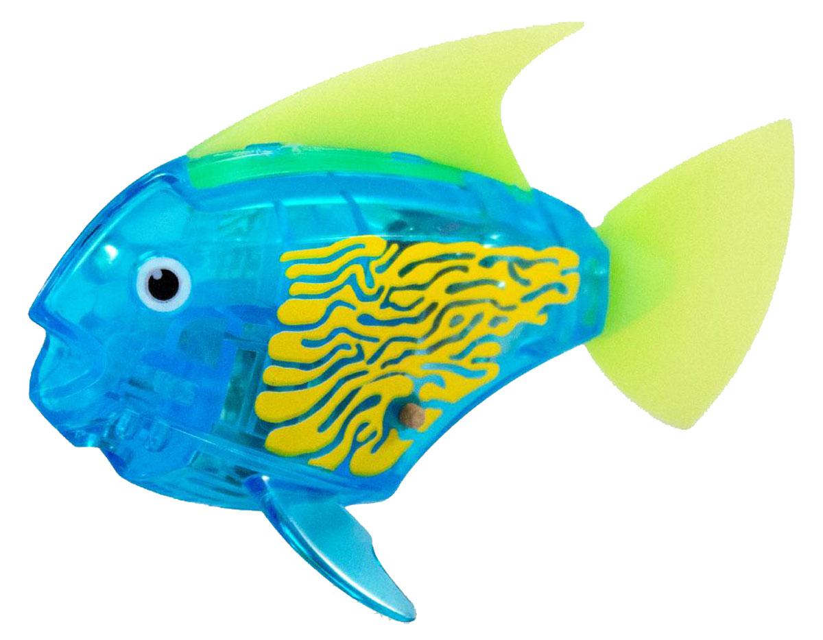 Hexbug Микро-робот Deco цвет синий460-3591_5Hexbug Aquabot 2.0 Deco - робот микро-рыбка Angelfish с дополнительным окрасом, который оживляет ее внешний вид, делая ее похожей на настоящую экзотическую рыбку. Для микрорыбки не требуется особый уход. Все что нужно — это емкость и вода. Попадая в жидкость, рыбка, почувствовав комфортную для себя среду, начнет шевелить плавничками и хвостом, плавая на поверхности и исследуя окружающее водное пространство, или быстро погружаясь вглубь. Спустя 5 минут непрерывных движений рыбка заснет. Постучав по стенкам аквариума, ее можно разбудить и продолжить игру. В один аквариум можно поместить несколько рыбок, вместе им будет веселее. Кстати за микрорыбкой можно наблюдать не только днем, но и ночью, ведь она светится в темноте!
