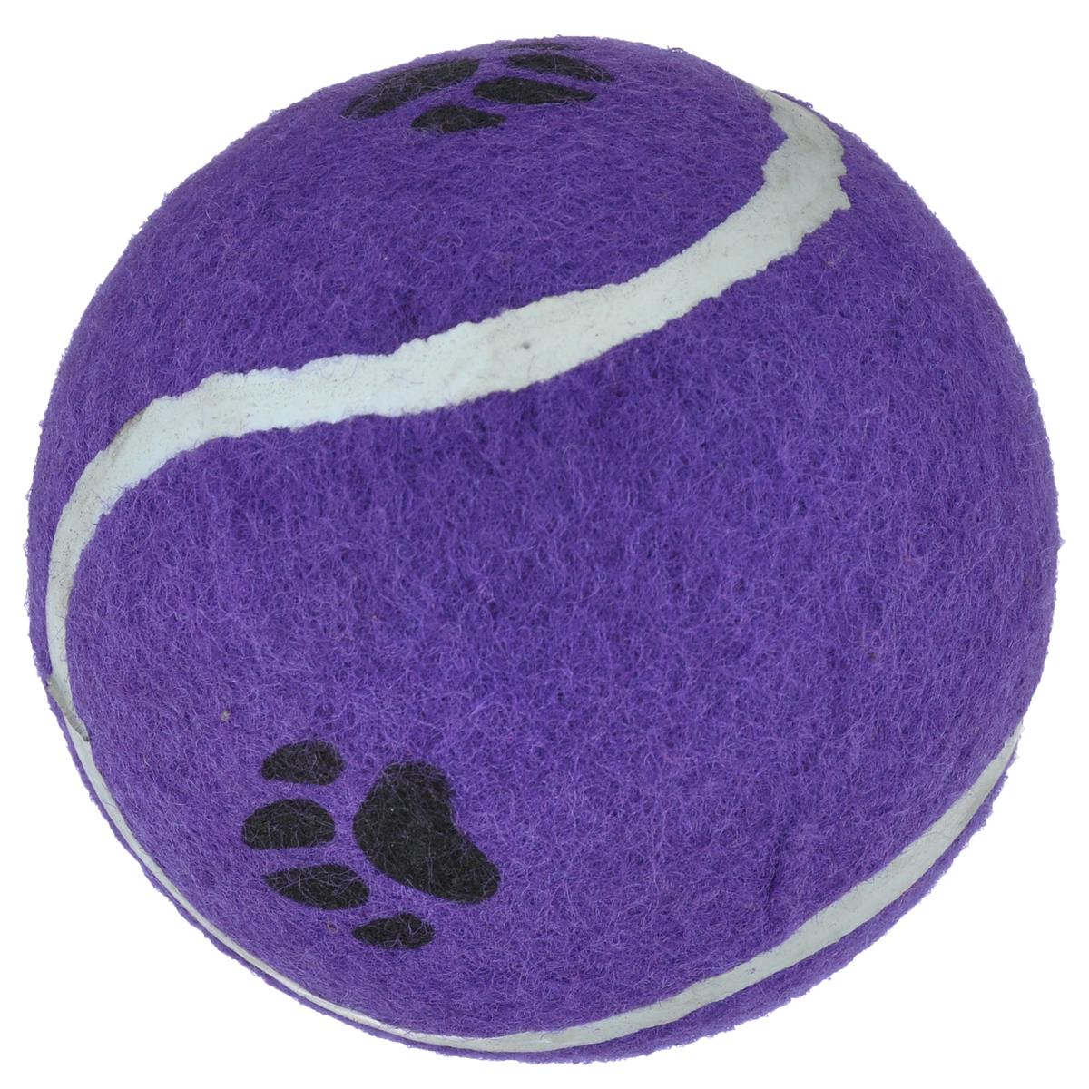 Игрушка для собак I.P.T.S. Мячик теннисный с отпечатками лап, цвет: фиолетовый, диаметр 10 см16211/625596_фиолетовыйИгрушка для собак I.P.T.S. Мячик теннисный с отпечатками лап изготовлена из прочной цветной резины с ворсистой поверхностью в виде реального теннисного мяча с отпечатками лап. Предназначена для игр с собакой любого возраста. Такая игрушка привлечет внимание вашего любимца и не оставит его равнодушным. Диаметр: 10 см.