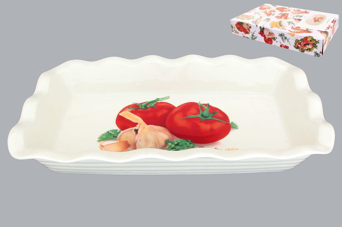 Блюдо для заливного Elan Gallery Помидоры, 650 мл101194Сервировочное блюдо Elan Gallery Помидоры, изготовленное из керамики, прекрасно подойдет для заливного или холодца и для хранения слоеных салатов. Блюдо оформлено рисунком с изображением продуктов. Такое блюдо украсит сервировку вашего стола и подчеркнет прекрасный вкус хозяйки. Не использовать в микроволновой печи. Размер блюда (Д х Ш х В): 27 см х 15 см х 4,5 см.