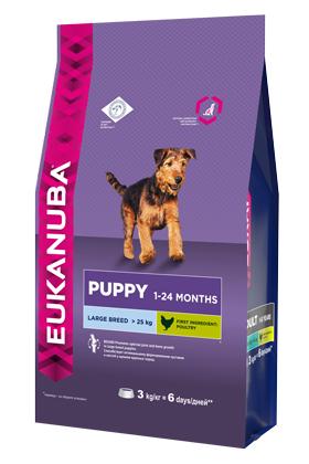 Корм Eukanuba Dog для щенков крупных пород 3 кг10137545Корм сухой полнорационный Eukanuba для щенков крупных и очень крупных пород от 1 до 24 месяцев (более 25 кг). Профессиональное сбалансированное питание, специально разработанное с учетом особенностей щенков крупных и очень крупных пород в возрасте от 1 до 24 месяцев. 1. КРЕПКИЕ КОСТИ Способствует оптимальному формированию суставов и костей у щенков крупных пород. 2. РОСТ Способствует здоровому развитию суставов и крепких костей за счет оптимального уровня кальция и фосфора, эффективность которых клинически доказана. 3. РАЗВИТИЕ Докозагексаеновая кислота (ДГК), эффективность которой клинически доказана, помогает щенкам становиться более смышлеными и способными к обучению и дрессировке. 4. ЗАЩИТА Антиоксиданты способствуют поддержанию естественной защиты организма щенков. Условия хранения: в прохладном темном месте