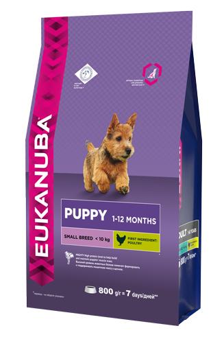Корм Eukanuba Dog для щенков мелких пород 800 г10137692Корм сухой полнорационный Eukanuba для щенков мелких пород от 1 до 12 месяцев (до 10 кг). Профессиональное сбалансированное питание, специально разработанное с учетом особенностей щенков мелких пород в возрасте от 1 до 12 месяцев. 1. ФИЗИЧЕСКАЯ ФОРМА Высокий уровень животных белков помогает формировать и поддерживать мышечную массу у щенков. 2. РОСТ Кальций, эффективность которого клинически доказана, способствует укреплению костей. 3. РАЗВИТИЕ Докозагексаеновая кислота (ДГК), эффективность которой клинически доказана, помогает щенкам становиться более смышлеными и способными к обучению и дрессировке. 4. ЗАЩИТА Антиоксиданты способствуют поддержанию естественной защиты организма щенков. Условия хранения: в прохладном темном месте
