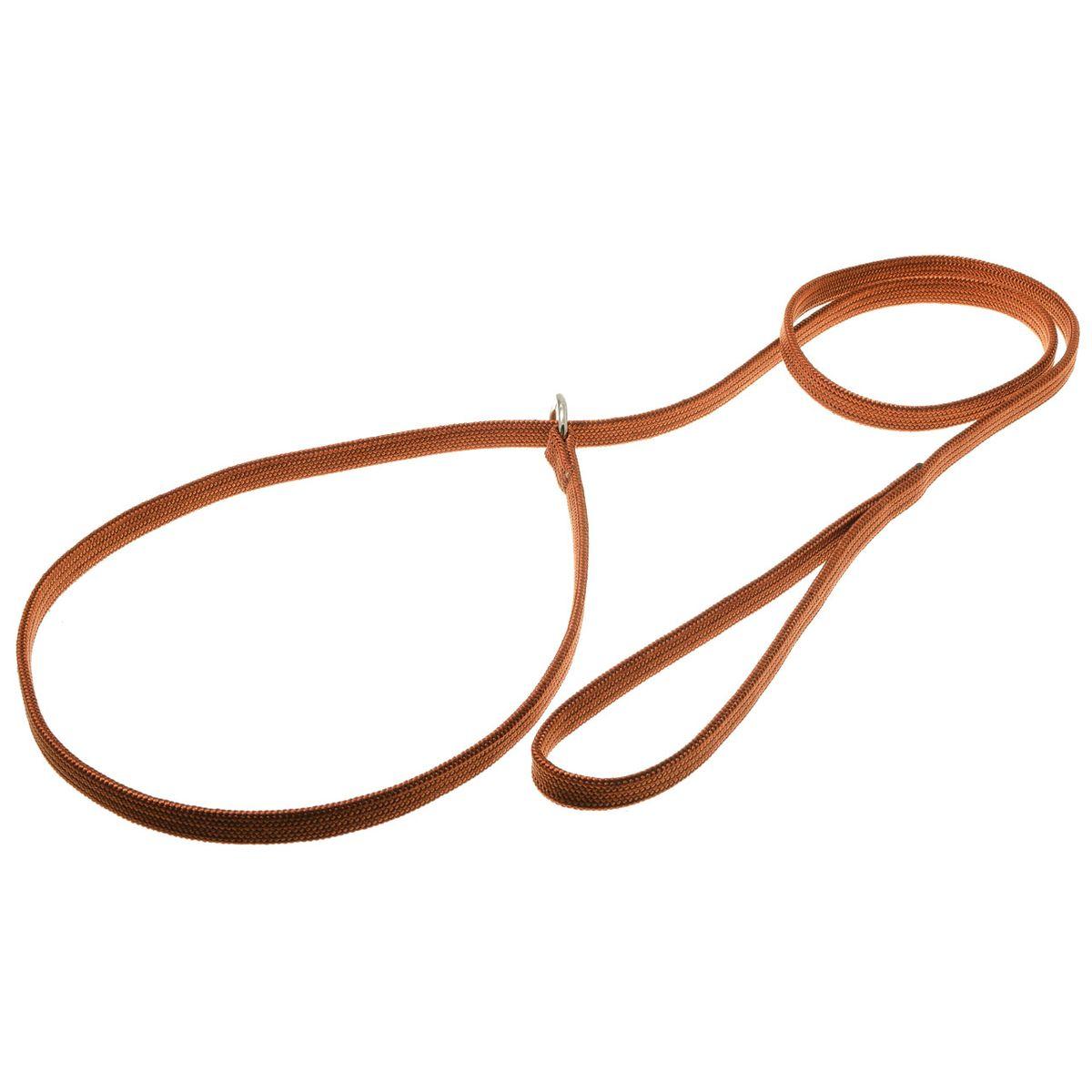 Поводок для собак V.I.Pet, цвет: светло-коричневый, ширина 10 мм, длина 1,5 м. 74-238974-2389Поводок-удавка V.I.Pet состоит из петли с фиксатором и, собственно, поводка. Является самым распространенным видом выставочной амуниции. Подходит также для повседневного использования.