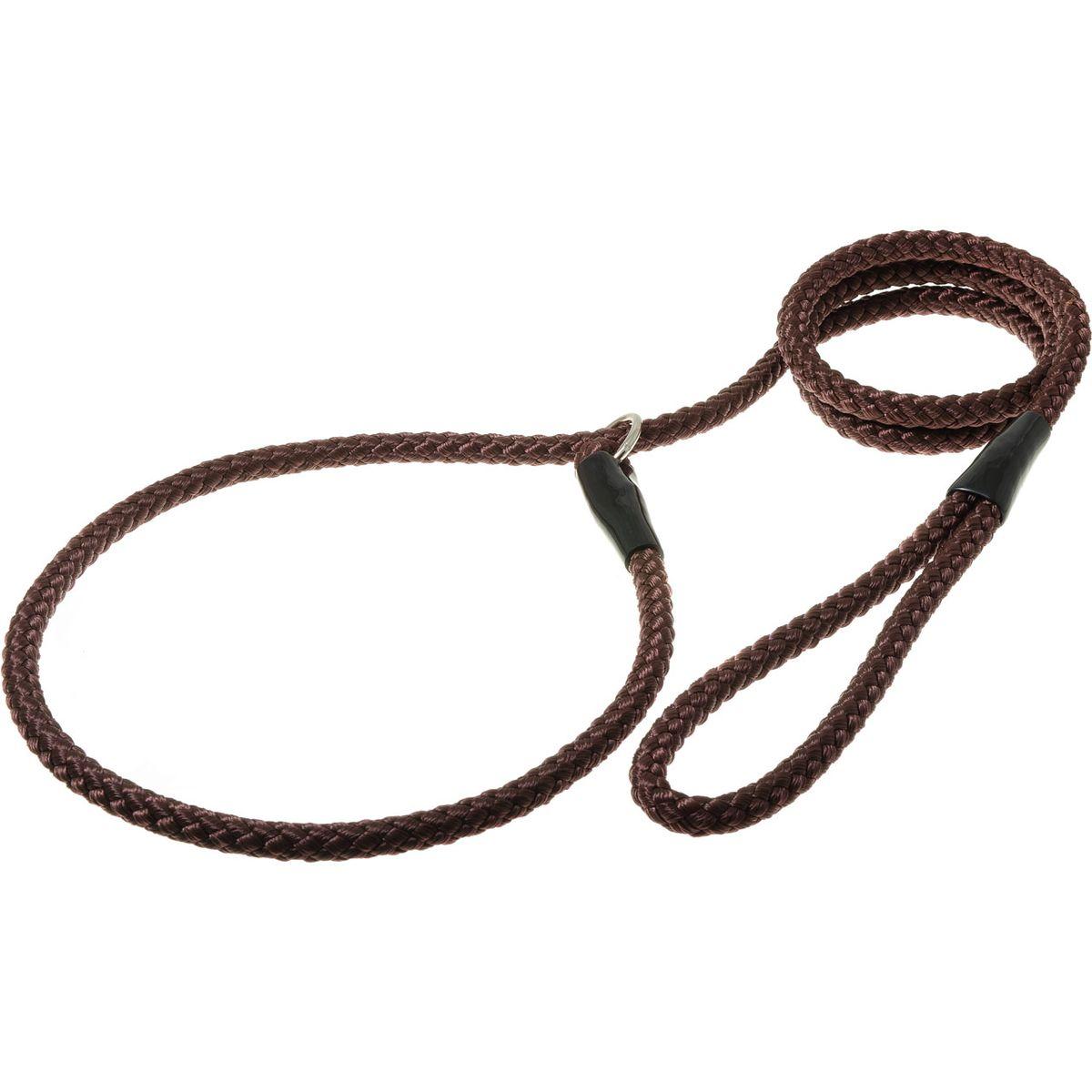 Поводок-удавка с кольцом нейлоновый канат 10мм*170см (коричневый)PDE1068BR