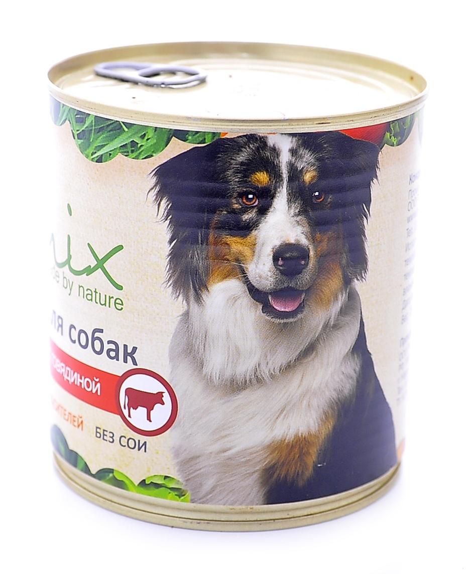 Organix Консервы для собак c говядиной, 750 г18073Мясные консервы для взрослых собак с говядиной Вкусный консервированный корм для собак. Изготовлен из 100% свежего мяса. Не содержит искусственных красителей, ароматизаторов или консервантов, ГМО. Специальная обработка помогает сохранять корм длительное время Приготовлены из тщательно отобранных сортов мяса, которые внесут приятное разнообразие в меню вашего питомца. Корм разработан для обеспечения всех питательных потребностей взрослых собак. Состав: говядина, рубец, печень, сердце, легкое, натуральная желирующая добавка, злаки (не более 2%) соль, растительное масло, вода. В 100 г продукта: протеин - 8,0, жир - 6,0, углеводы - 4,0, клетчатка - 0,2, зола - 2,0, влага - до 80%. Энергетическая ценность: 102 ккал. Суточная норма 25 г на 1 кг веса животного. Условия хранения: в прохладном темном месте.