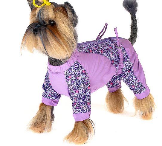 Комбинезон для собак Happy Puppy Звездочка, для девочки, цвет: сиреневый. Размер 1 (S)HP-150016-1Комбинезон для собак Happy Puppy Звездочка отлично подойдет для прогулок. Комбинезон изготовлен из полиэстера, защищающего от ветра и осадков. Комбинезон застегивается на молнию и липучку, благодаря чему его легко надевать и снимать. Ворот, низ рукавов и брючин оснащены внутренними резинками, которые мягко обхватывают шею и лапки, не позволяя просачиваться холодному воздуху. На пояснице комбинезон затягивается на шнурок-кулиску. Благодаря такому комбинезону простуда не грозит вашему питомцу, и он не даст любимцу продрогнуть на прогулке.