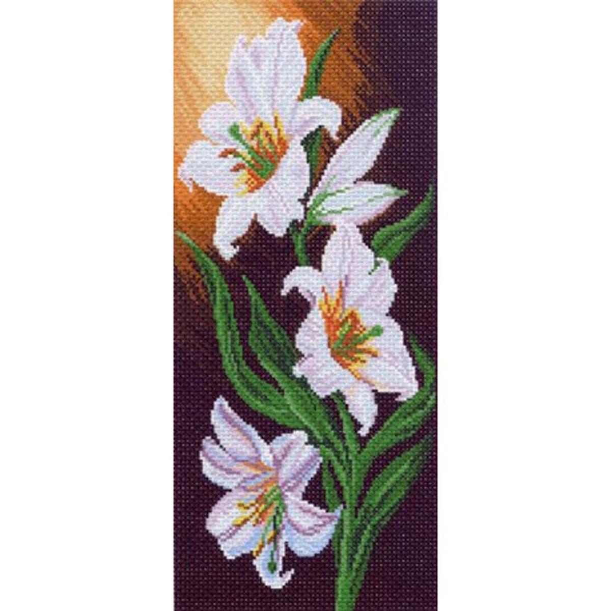 Канва с рисунком для вышивания Белоснежная элегантность, 38 х 16,5581759Канва с рисунком для вышивания Белоснежная элегантность изготовлена из хлопка. Рисунок-вышивка выполненный на такой канве, выглядит очень оригинально. Вышивка выполняется в технике полный крестик в 2-3 нити или полукрестом в 4 нити. Вышивание отвлечет вас от повседневных забот и превратится в увлекательное занятие! Работа, сделанная своими руками, создаст особый уют и атмосферу в доме и долгие годы будет радовать вас и ваших близких, а подарок, выполненный собственноручно, станет самым ценным для друзей и знакомых. Рекомендуемое количество цветов: 21 шт. УВАЖАЕМЫЕ КЛИЕНТЫ! Обращаем ваше внимание, на тот факт, что нитки в комплект не входят.