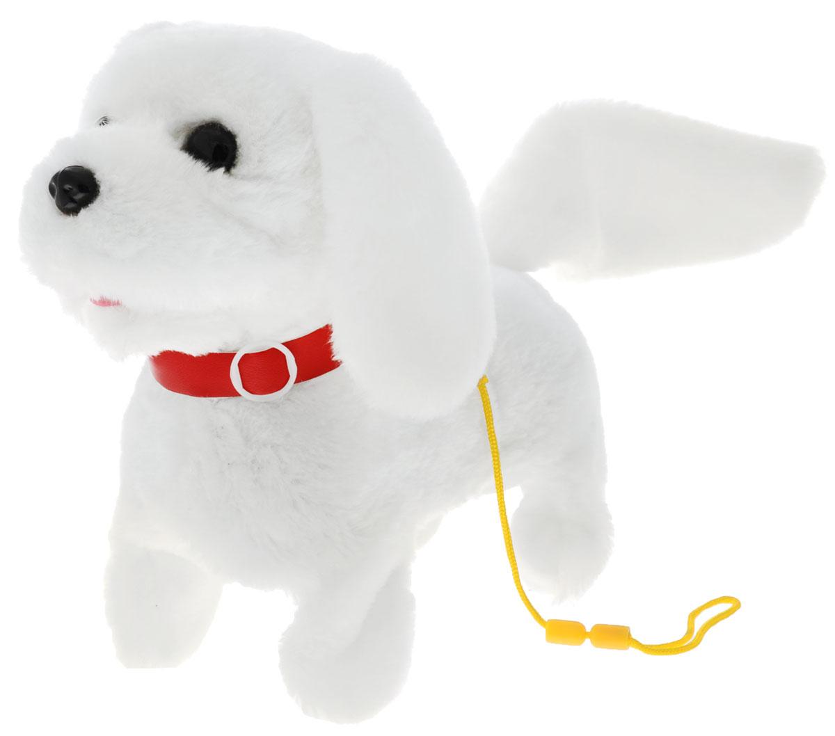 Sonata Style Мягкая игрушка Собачка цвет белый 22 смGT5928_белыйМягкая игрушка Sonata Style Собачка - самый лучший подарок для ребенка! Забавная игрушка сделана из приятного и очень мягкого материала, безвредного для малыша. Собачка умеет ходить вперед, останавливаться, шевелить хвостиком и лаять. Управляется собачка с помощью поводка, потянув за который, можно включить игрушку. Переключение режимов лая и ходьбы происходит последовательным потягиванием за поводок. Для работы игрушки необходимы 2 батарейки типа С (товар комплектуется демонстрационными).