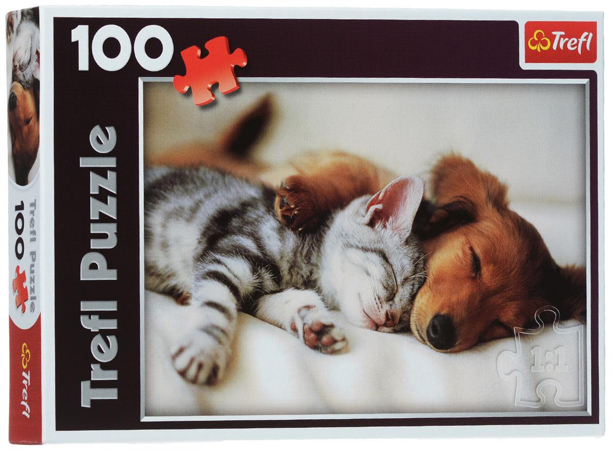 Trefl Пазл Спящие друзья16138Два милых пушистых малыша быстро нашли общий язык - не до раздоров, когда хочется спать... Очаровательный котенок нежно приткнулся в подбородок рыжего щенка: их дыхание согревает друг друга, а чувство бьющегося рядом сердца рядом успокаивает, делая сон безмятежным. Соберите эту картинку из 100 деталей, и она принесет спокойствие и мир в ваш дом. Игра выпущена польским брендом Trefl, известным своими пазлами во всем мире. Дело в том, что это пазлы высочайшего качества, изготавливающиеся из каландрированной бумаги, что позволяет приобрести им невероятную гладкость и яркие насыщенные цвета, которые не стираются со временем. Кроме того, это экологически чистая продукция, не способная нанести вреда ребенку и окружающей среде. Сборка пазла помогает развить мышление, внимание и моторику рук. Размер готового изображения: 408 мм х 276 мм.
