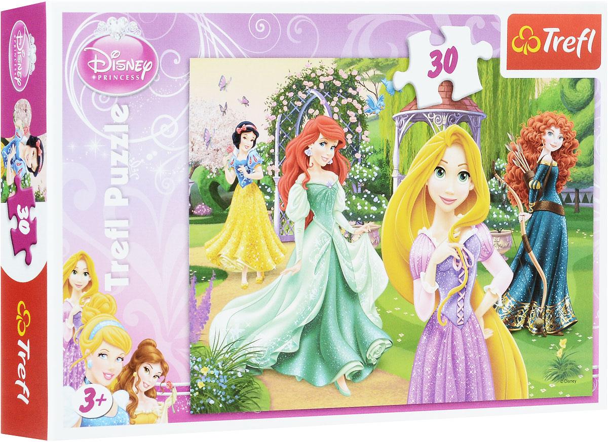 Trefl Пазл Очаровательные принцессы18172Пазл Trefl Очаровательные принцессы станет лучшим подарком для маленькой девочки, поскольку каждая юная леди мечтает превратиться в очаровательную принцессу. На картинке изображены четыре диснеевских героини: Белоснежка, русалочка Ариэль, Рапунцель и Мерида, гуляющие по чудесному зеленому саду. Пазл изготовлен из качественных сортов картона, покрытого защитным пластиком, который предохраняет его от износа и выцветания. Сборка пазла поможет малышке развить мышление, внимание и моторику рук. Размер готового пазла: 27 см х 20 см.