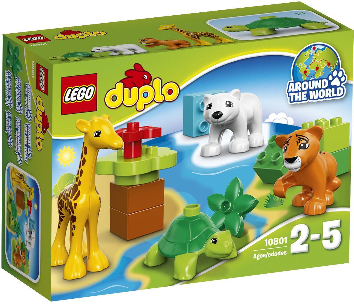 LEGO DUPLO Конструктор Вокруг света Малыши 1080110801Конструктор LEGO DUPLO Вокруг света: Малыши приведет в восторг любого ребенка, ведь все дети обожают знаменитые конструкторы Lego. Конструктор содержит 13 пластиковых элементов. Эти милые зверюшки из набора Вокруг света: Малыши идеально подходят маленьким любителям животных для раннего развития навыков ролевых игр. Дети заботятся о своих новых друзьях, говорят о том, как называются детеныши разных животных, и где они живут в дикой природе. Этот набор предлагает огромные возможности для обучения и игры с тигрёнком, детёнышем жирафа, полярным медвежонком и детёнышем черепахи. С яркими цветными кубиками Lego Duplo, разработанными специально для начинающих строителей, так легко собрать свою историю. Все элементы набора выполнены из безопасного пластика и имеют увеличенные размеры, специально для маленьких детских пальчиков. Игры с конструкторами помогут ребенку развить воображение, внимательность, пространственное мышление и творческие способности....