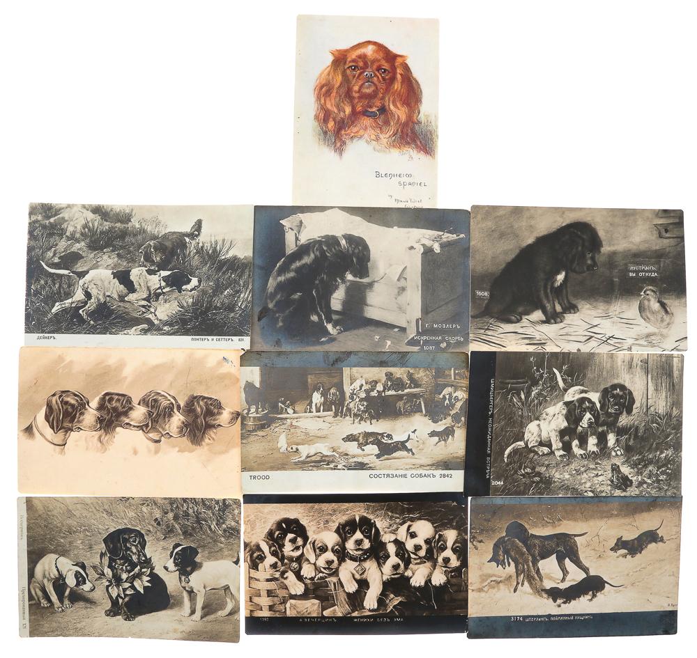 Собаки. Комплект из 10 открыток739Комплект из 10 открыток Собаки. Российская империя, начало XX века. Размер открыток: 14 х 9 см. Сохранность хорошая. Четыре открытки с письмами.