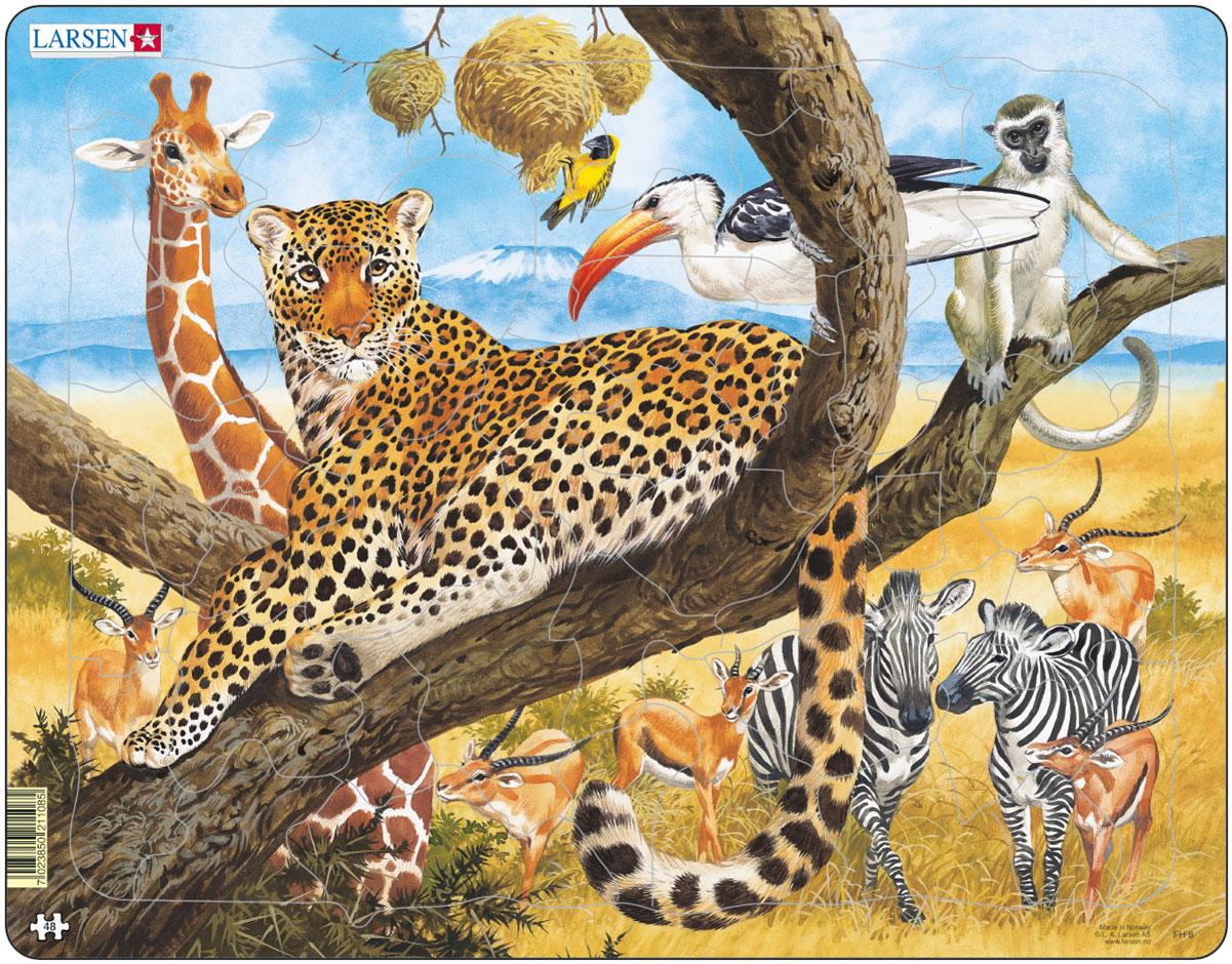 Larsen Пазл ЛеопардFH8Пазл Larsen Леопард станет отличным развлечением для вашего ребенка. Пазл позволит ребенку собрать красочную картинку с изображением грациозного леопарда и познакомиться с обитателями африканской саванны. Выполненные из высококачественного трехслойного картона, пазлы Larsen не деформируются. Все пазлы снабжены специальной подложкой, благодаря чему их удобно собирать. Игра с пазлами благоприятно влияет на развитие ребенка. Веселая игра сопровождается манипуляциями с мелкими предметами, сопоставлением и сложением деталей, в результате чего развивается сенсорное восприятие и мелкая моторика. Порадуйте своего малыша таким замечательным подарком!