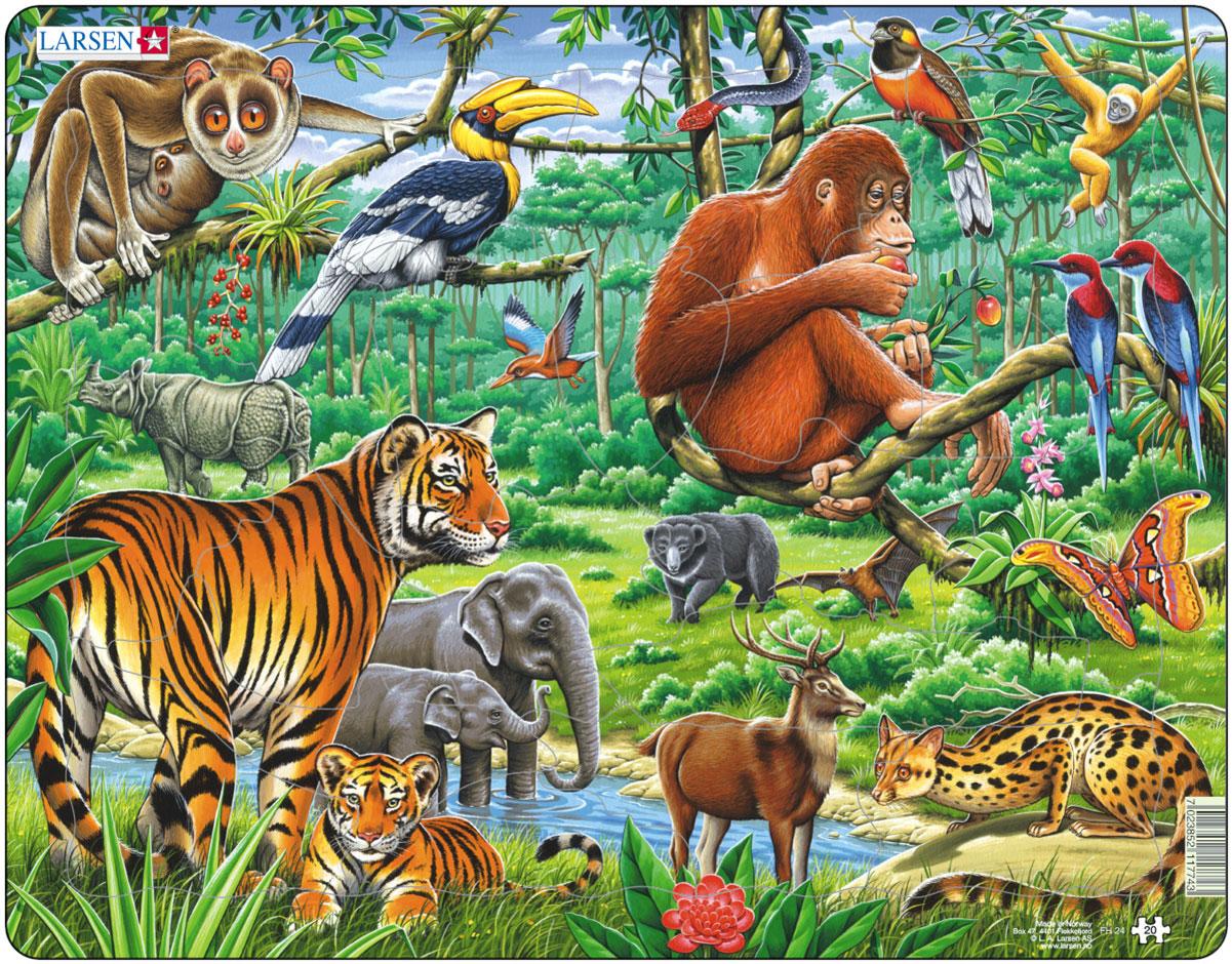 Larsen Пазл ДжунглиFH24Пазл Larsen Джунгли станет отличным развлечением для вашего ребенка. Пазл позволит ребенку собрать красочную картинку, на которой представлены различные животные. С помощью яркой картинки ребенок сможет познакомиться с обитателями джунглей. Выполненные из высококачественного трехслойного картона, пазлы Larsen не деформируются. Все пазлы снабжены специальной подложкой, благодаря чему их удобно собирать. Игра с пазлами благоприятно влияет на развитие ребенка. Веселая игра сопровождается манипуляциями с мелкими предметами, сопоставлением и сложением деталей, в результате чего развивается сенсорное восприятие и мелкая моторика. Порадуйте своего малыша таким замечательным подарком!