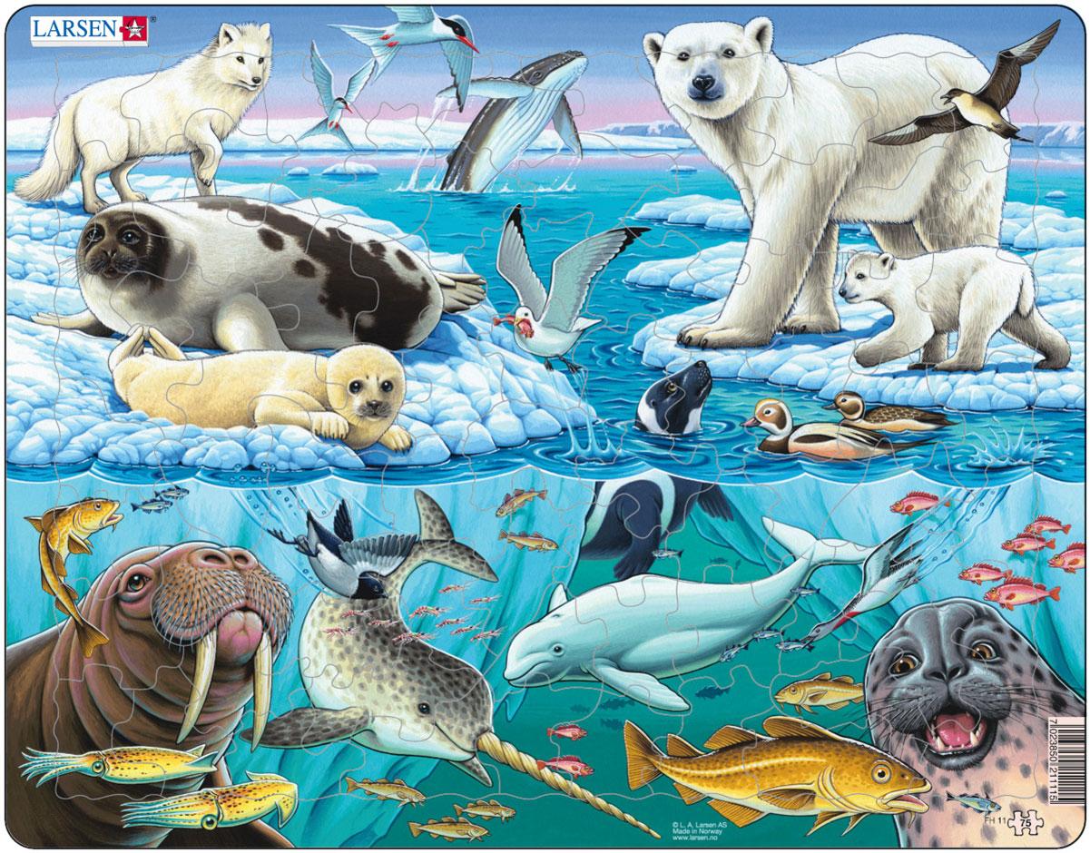 Картинки и рисунки детей и животных