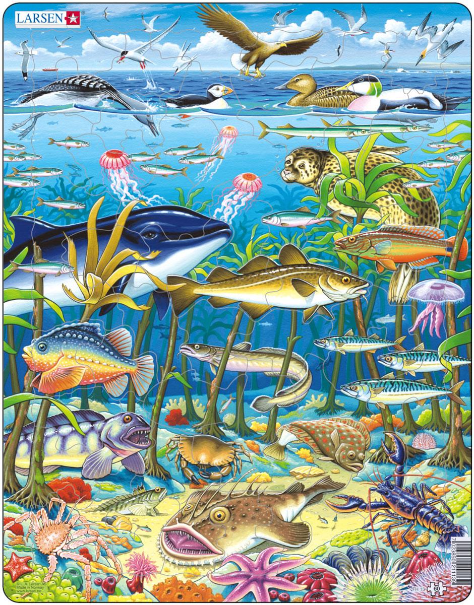 Larsen Пазл ВодорослиFH13Пазл Larsen Водоросли станет отличным развлечением для вашего ребенка. Пазл позволит ребенку собрать красочную картинку с изображением обитателей морских глубин. Благодаря яркой картинке ребенок познакомится с разнообразными видами рыб, птиц, водорослей и других морских жителей. Выполненные из высококачественного трехслойного картона, пазлы Larsen не деформируются. Все пазлы снабжены специальной подложкой, благодаря чему их удобно собирать. Игра с пазлами благоприятно влияет на развитие ребенка. Веселая игра сопровождается манипуляциями с мелкими предметами, сопоставлением и сложением деталей, в результате чего развивается сенсорное восприятие и мелкая моторика. Порадуйте своего малыша таким замечательным подарком!