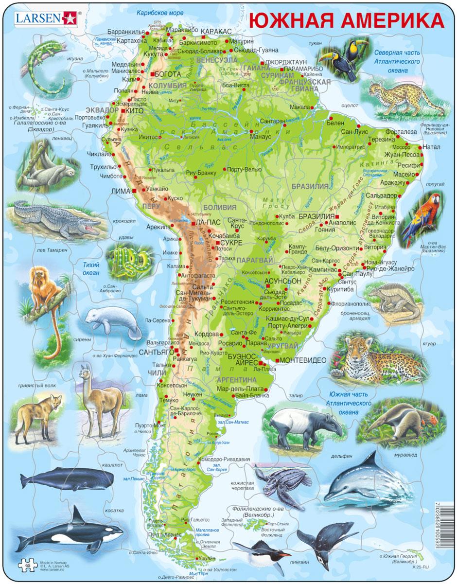 Larsen Пазл Животные Южной АмерикиA25Пазл Larsen Животные Южной Америки станет отличным развлечением для вашего ребенка. Пазл поможет вашему ребенку познакомиться с теплыми странами Южной Америки и ее обитателями. На деталях пазла изображен рельеф, нанесены надписи крупных городов и рек. Яркие реалистичные изображения птиц и животных дадут полное представление о флоре и фауне материка. Выполненные из высококачественного трехслойного картона, пазлы Larsen не деформируются. Все пазлы снабжены специальной подложкой, благодаря чему их удобно собирать. Игра с пазлами благоприятно влияет на развитие ребенка. Веселая игра сопровождается манипуляциями с мелкими предметами, сопоставлением и сложением деталей, в результате чего развивается сенсорное восприятие и мелкая моторика. Порадуйте своего малыша таким замечательным подарком!