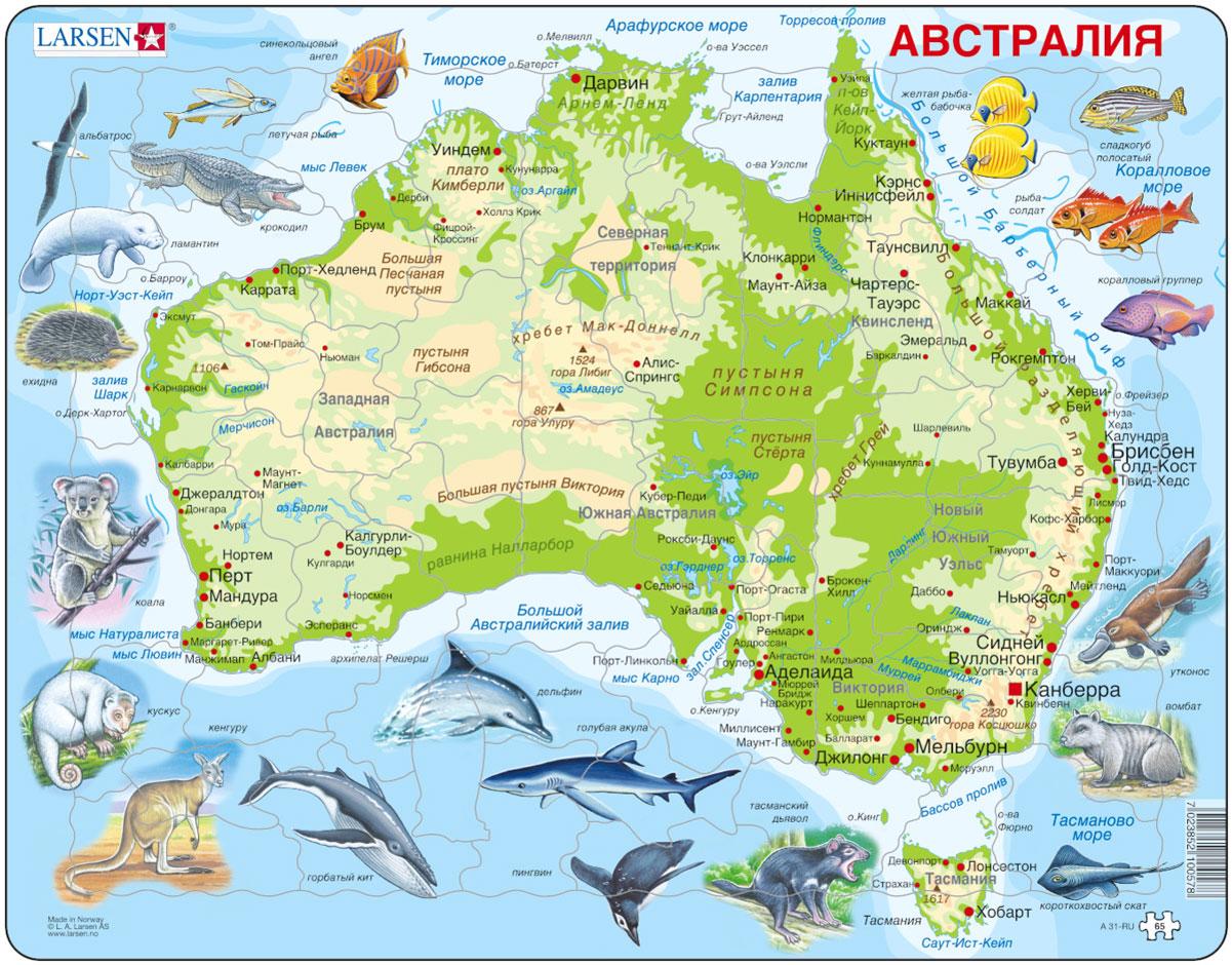 Larsen Пазл Животные АвстралииA31Пазл Larsen Животные Австралии станет отличным развлечением для вашего ребенка. Пазл поможет ребенку интересно провести время и узнать много нового и интересного о далекой Австралии. Русифицированный пазл состоит из большого количества элементов, на которые нанесены надписи крупных городов и рек, изображения птиц, рыб и животных. Выполненные из высококачественного трехслойного картона, пазлы Larsen не деформируются. Все пазлы снабжены специальной подложкой, благодаря чему их удобно собирать. Игра с пазлами благоприятно влияет на развитие ребенка. Веселая игра сопровождается манипуляциями с мелкими предметами, сопоставлением и сложением деталей, в результате чего развивается сенсорное восприятие и мелкая моторика. Порадуйте своего малыша таким замечательным подарком!