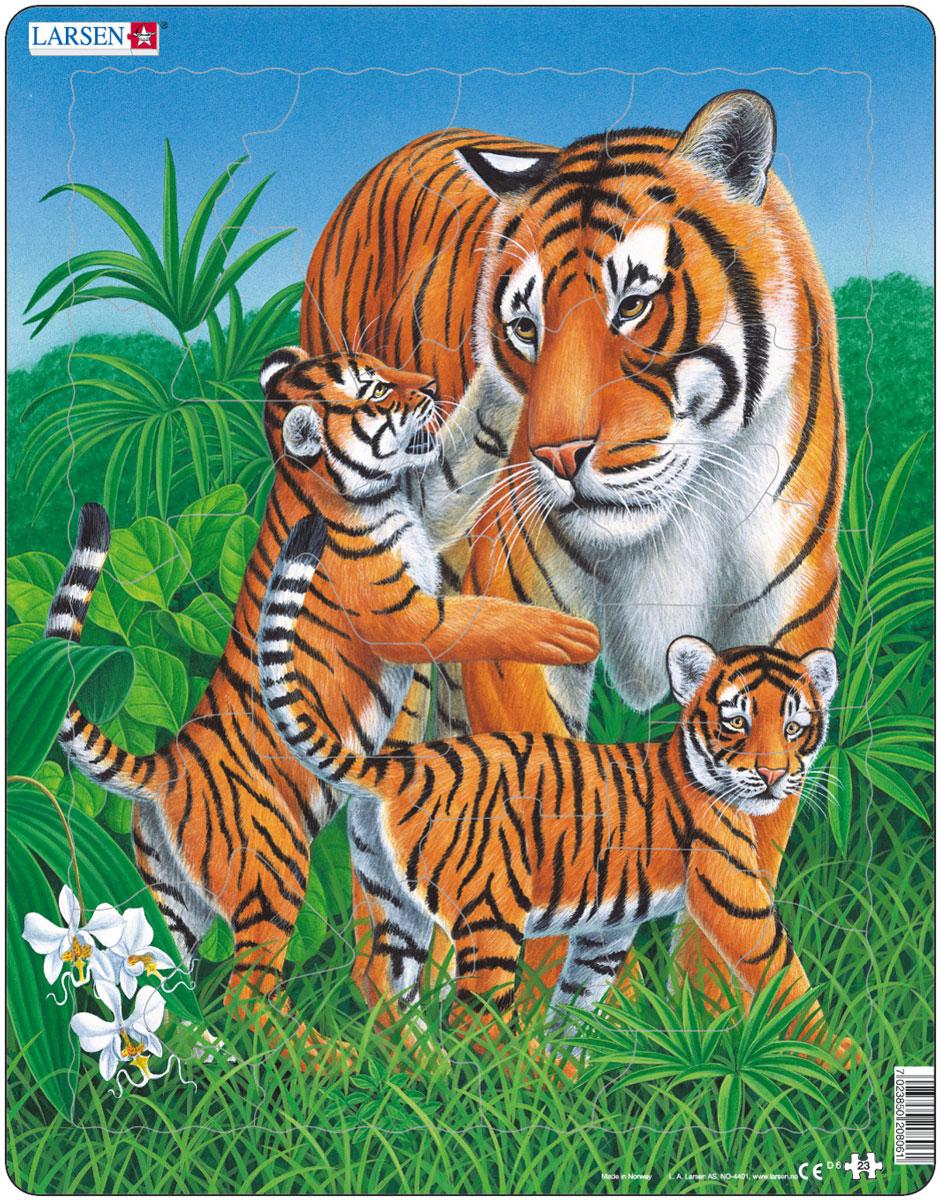 Larsen Пазл ТигрыD6Пазлы Ларсен направлены, прежде всего, на обучение. Пазл Larsen Тигры это не только яркая картинка, он также знакомит ребенка с представителями живой природы, величественными тиграми. Звери, среда их обитания и повадки переданы с фотографической точностью. Выполненные из высококачественного трехслойного картона, пазлы не деформируются и легко берутся в руки. Все пазлы снабжены специальной подложкой, благодаря чему их удобно собирать. Размер готового пазла: 36,5 см х 28,5 см.