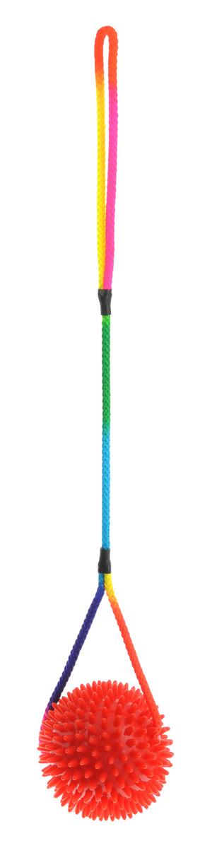 Игрушка для собак V.I.Pet Массажный мяч, на шнуре, цвет: красный, диаметр 10 см771050_красныйИгрушка для собак V.I.Pet Массажный мяч, изготовленная из ПВХ, предназначена для массажа и самомассажа рефлексогенных зон. Она имеет мягкие закругленные массажные шипы, эффективно массирующие и не травмирующие кожу. Сквозь мяч продет разноцветный шнур. Игрушка не позволит скучать вашему питомцу ни дома, ни на улице. Диаметр: 10 см. Длина шнура: 50 см.