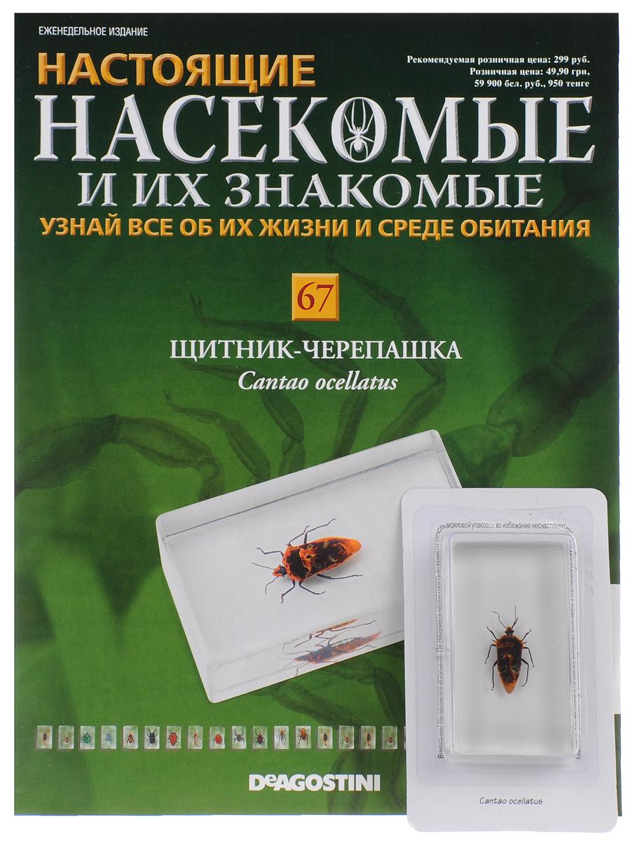 журналы с насекомые и их знакомые